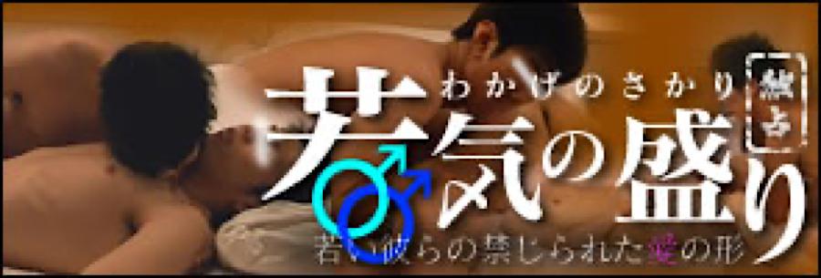 無修正セックス盗撮:独占!「若気の盛り」:チンコ