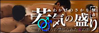 無修正セックス盗撮:独占!「若気の盛り」:ホモ