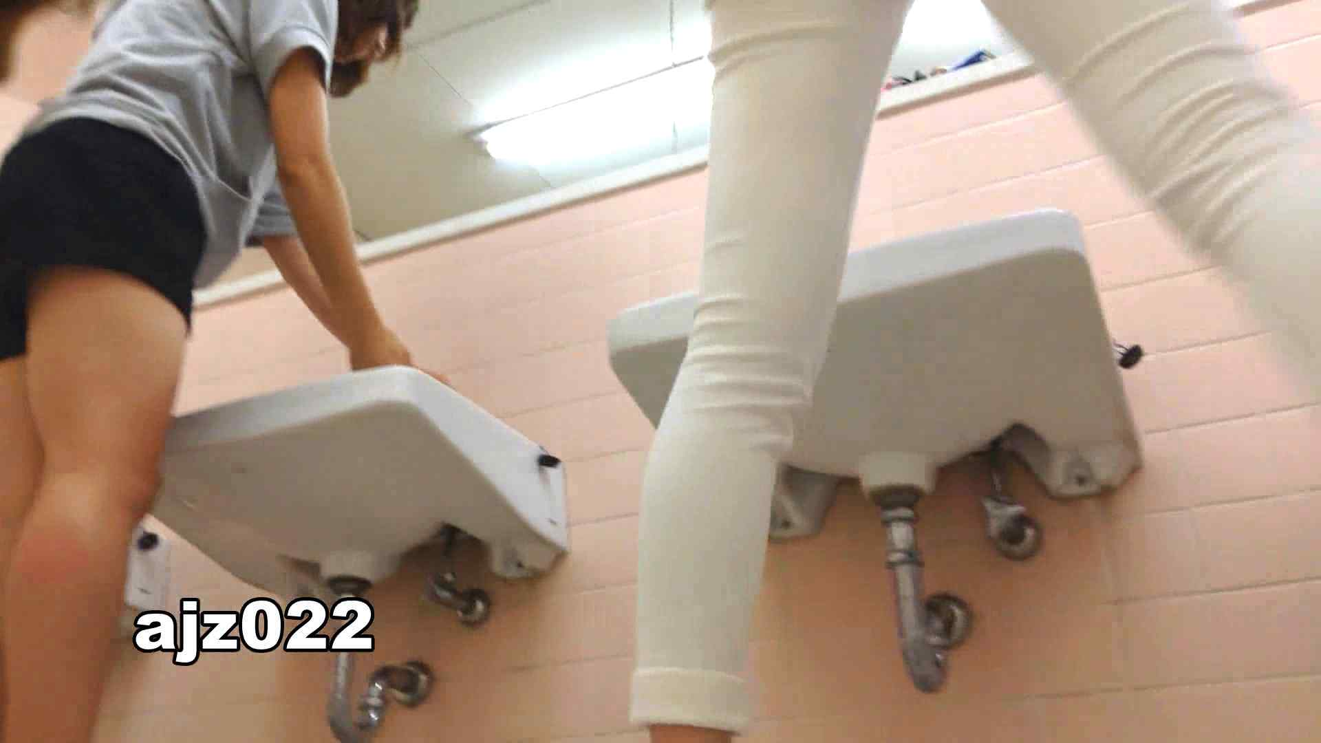 某有名大学女性洗面所 vol.22 排泄 オメコ無修正動画無料 94連発 39