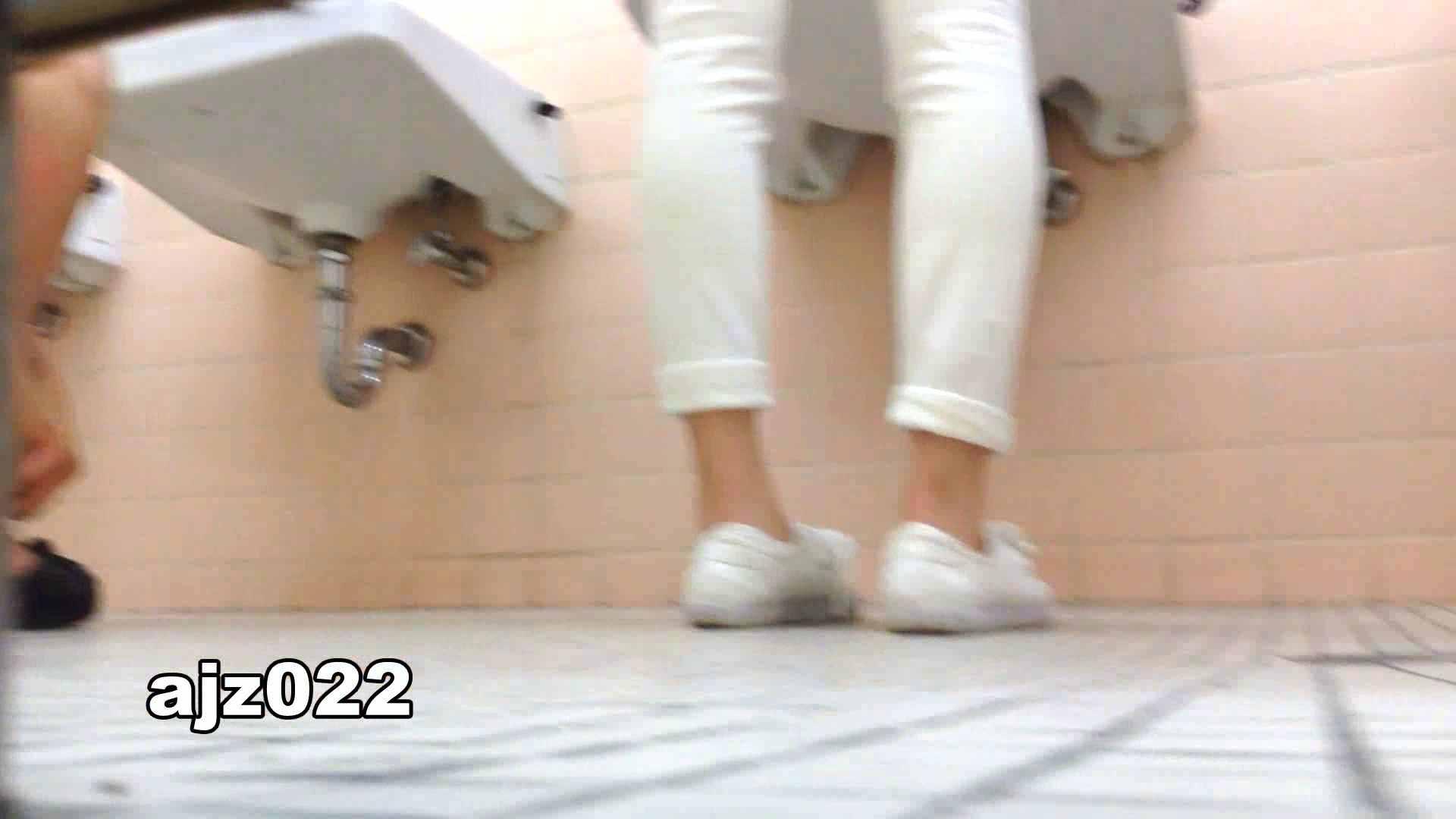 某有名大学女性洗面所 vol.22 洗面所 オメコ動画キャプチャ 94連発 43