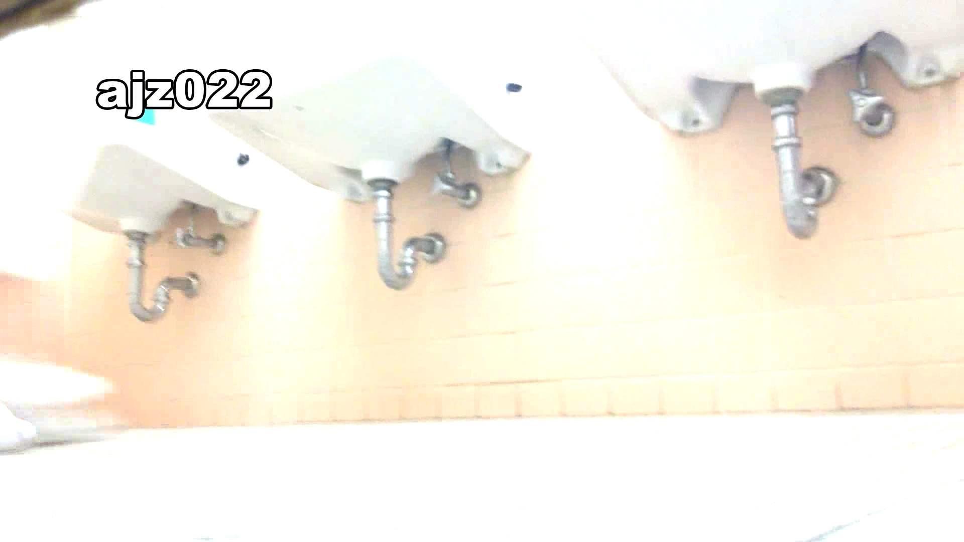 某有名大学女性洗面所 vol.22 潜入 盗撮画像 94連発 52