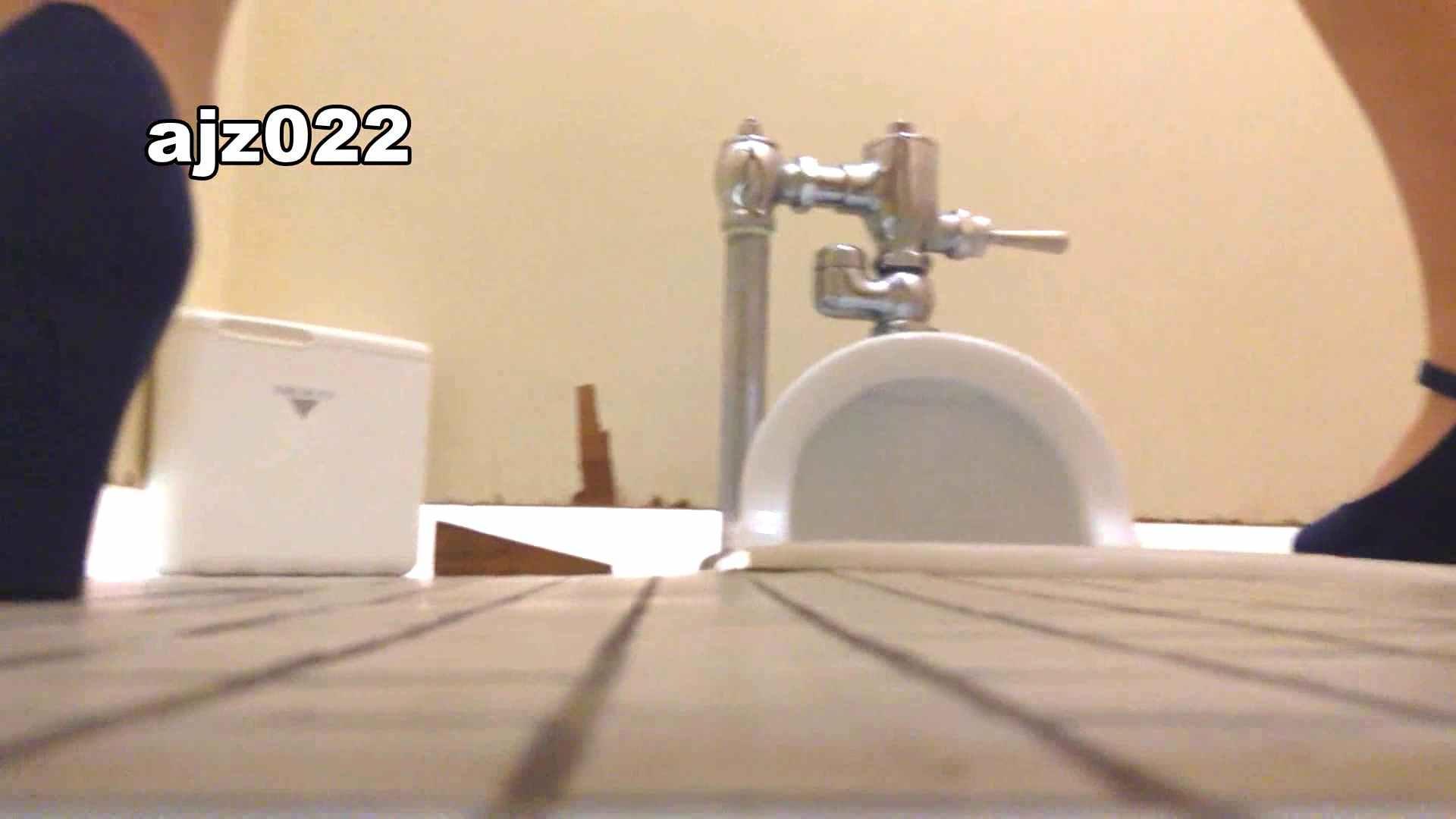 某有名大学女性洗面所 vol.22 潜入 盗撮画像 94連発 68