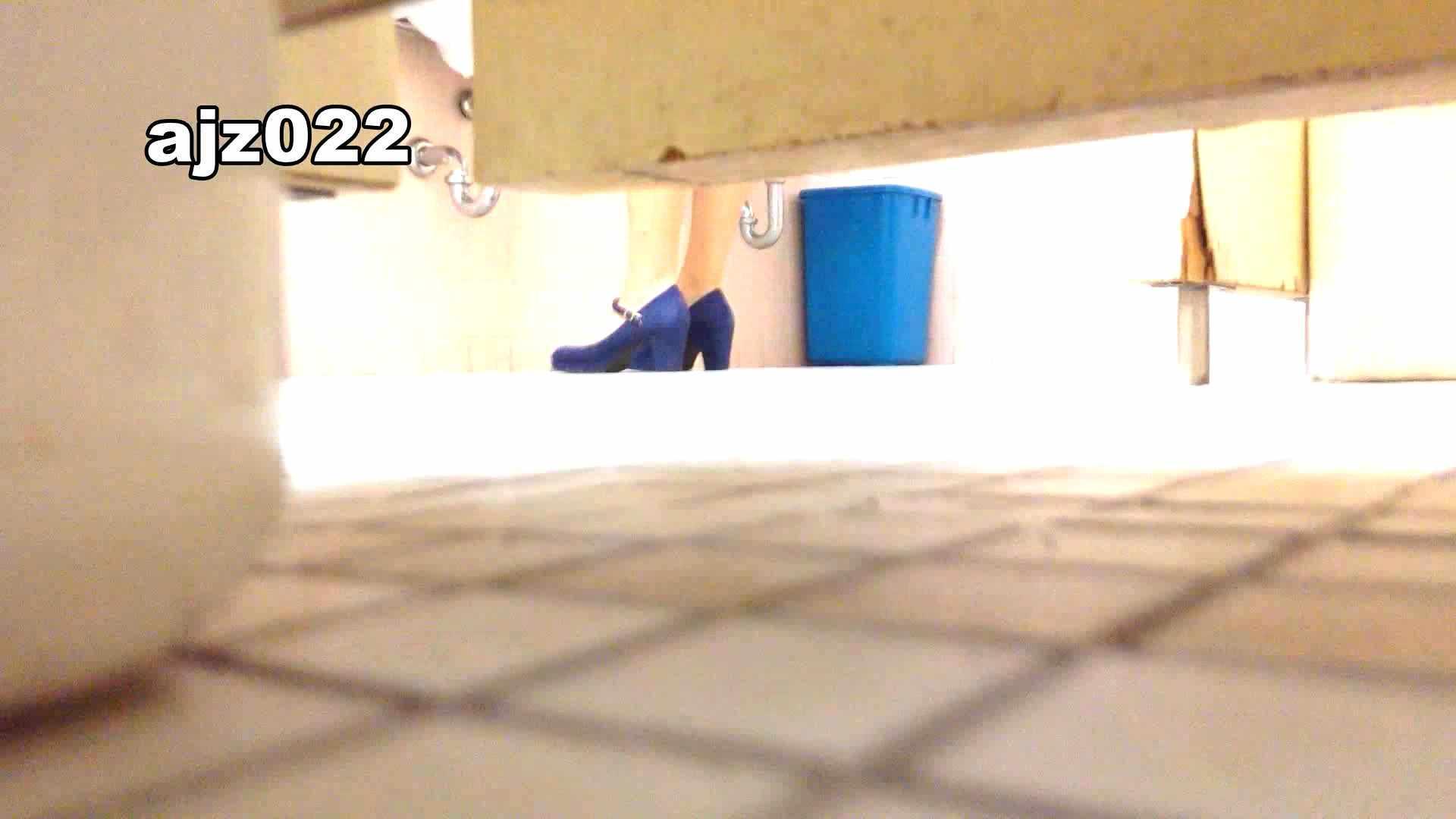 某有名大学女性洗面所 vol.22 和式 おまんこ動画流出 94連発 70