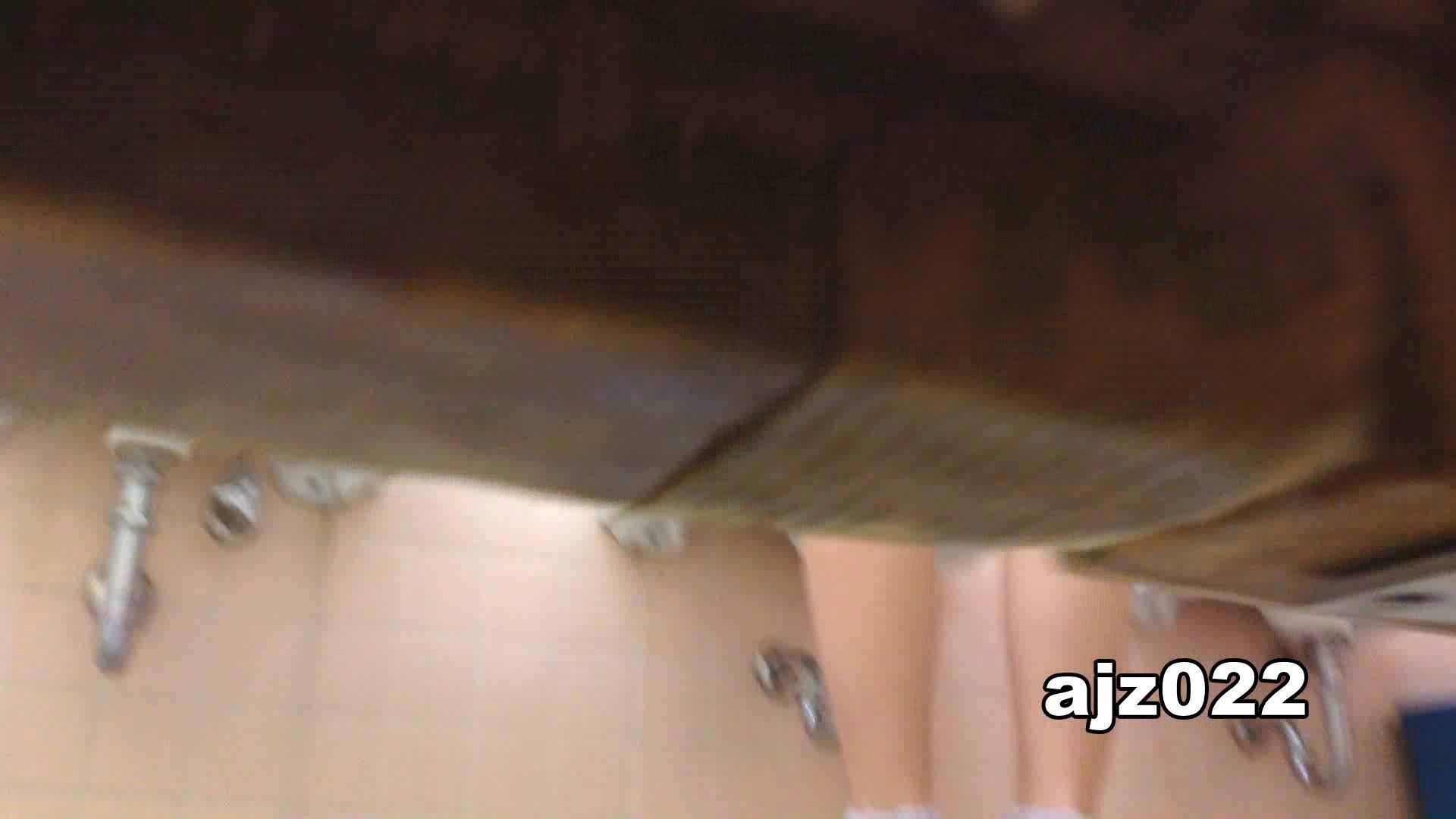 某有名大学女性洗面所 vol.22 和式 おまんこ動画流出 94連発 94