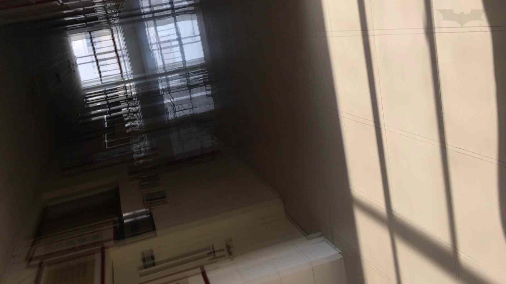 芸術大学ガチ潜入盗撮 JD盗撮 美女の洗面所の秘密 Vol.91 0  54連発 14