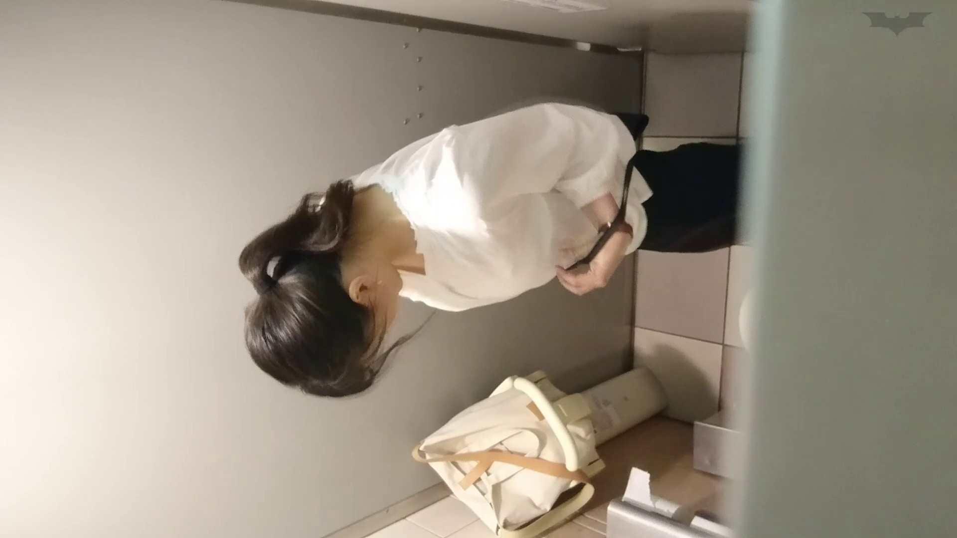 化粧室絵巻 ショッピングモール編 VOL.22 いやらしいOL   0  46連発 15