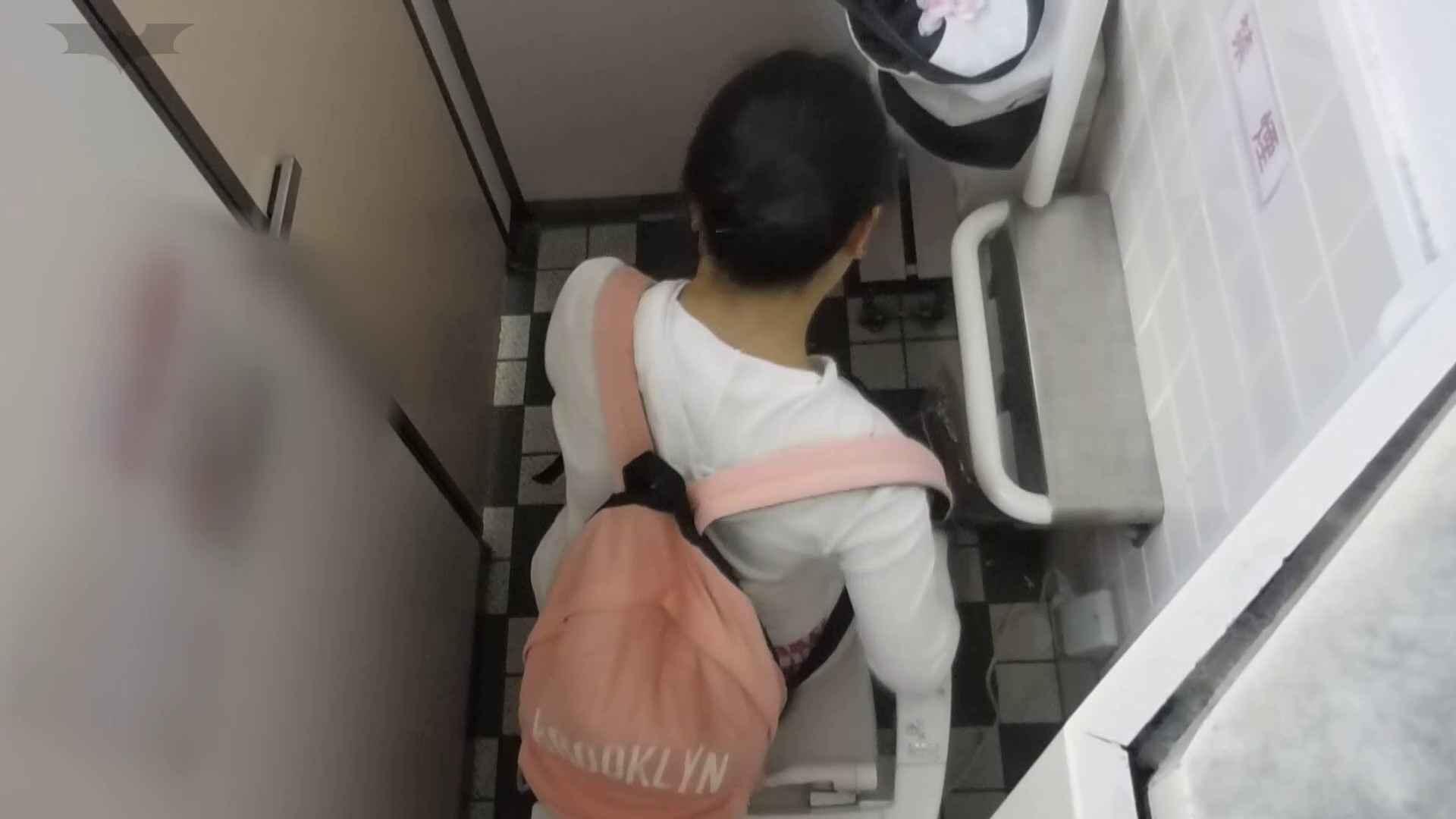 化粧室絵巻 駅舎編 VOL.19 いやらしいOL  40連発 20