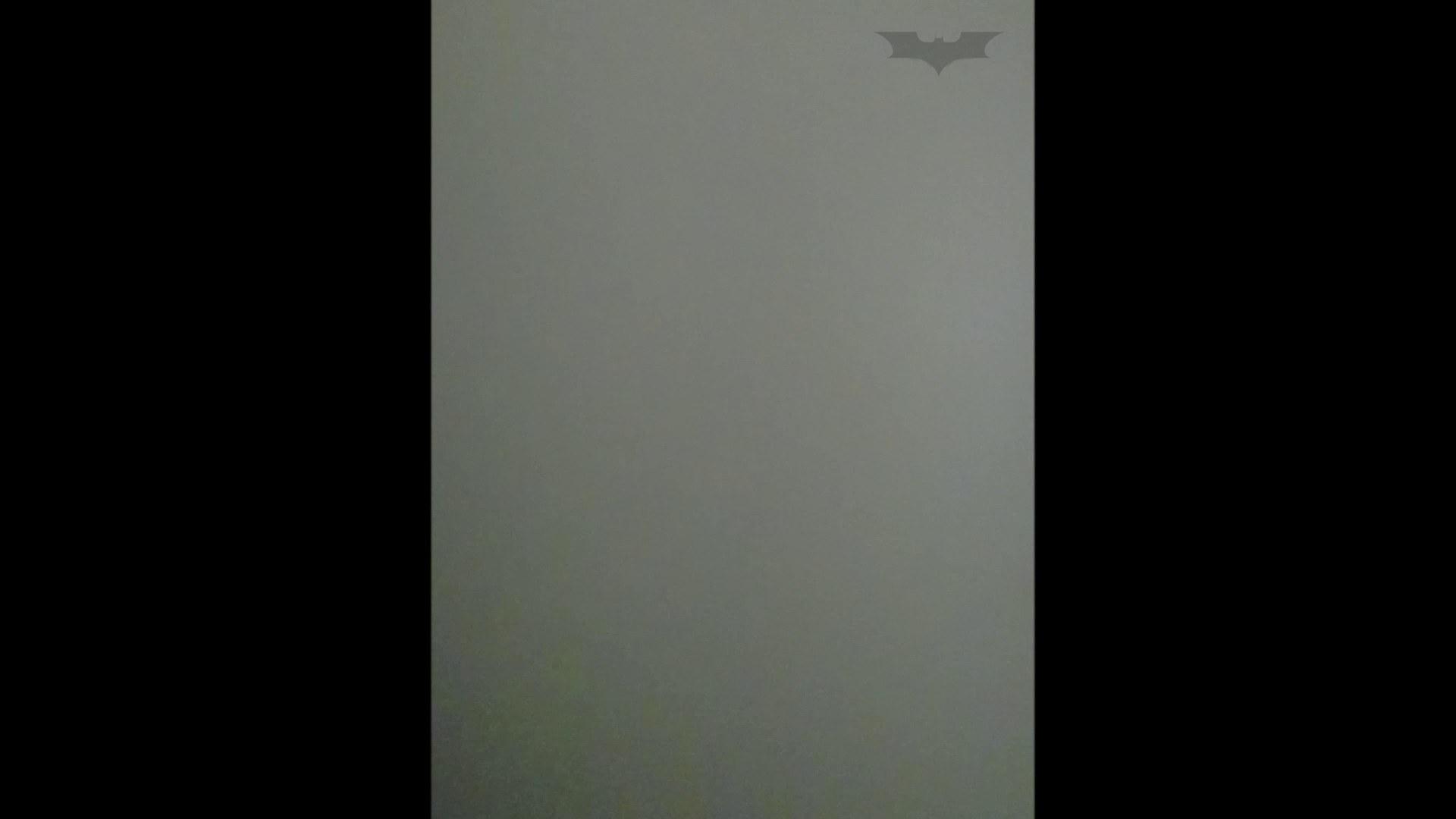 化粧室絵巻 ショッピングモール編 VOL.02 高画質 おめこ無修正動画無料 46連発 23