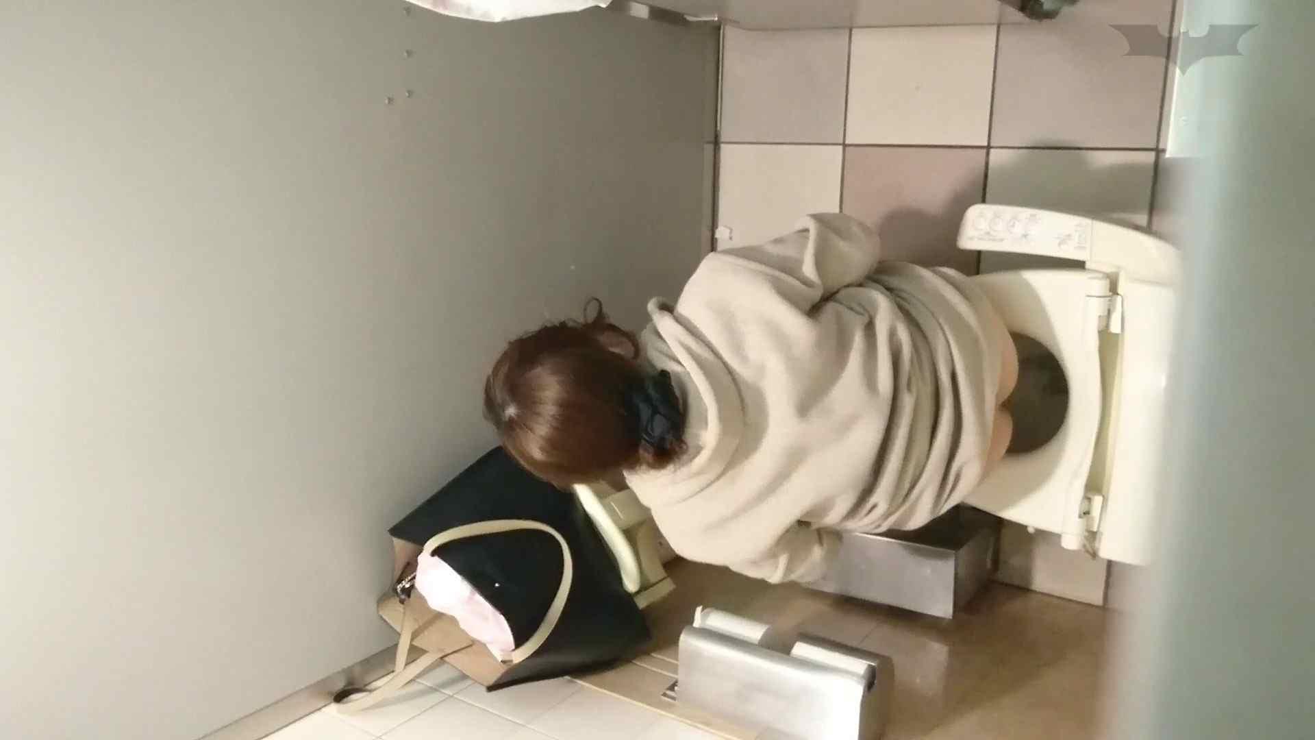 化粧室絵巻 ショッピングモール編 VOL.11 0  98連発 10