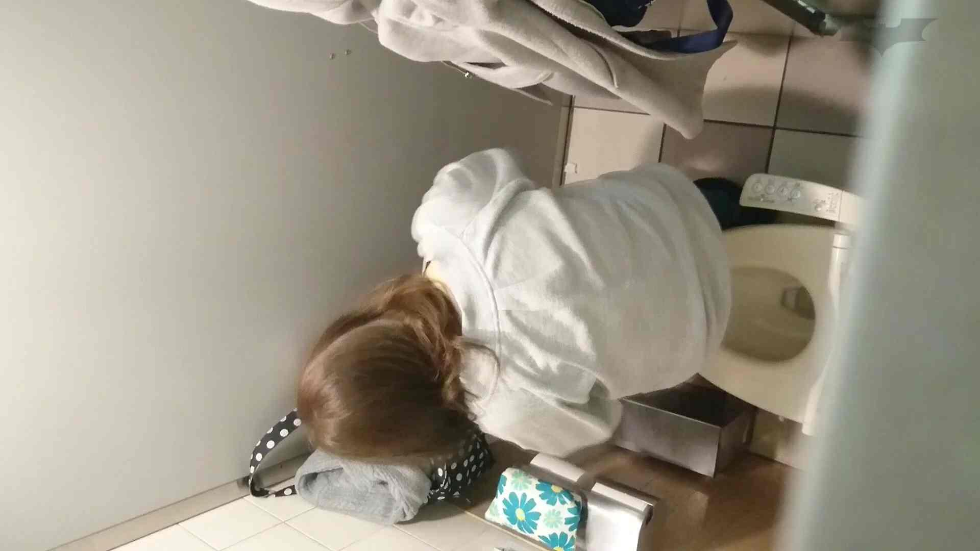 化粧室絵巻 ショッピングモール編 VOL.11 0  98連発 60