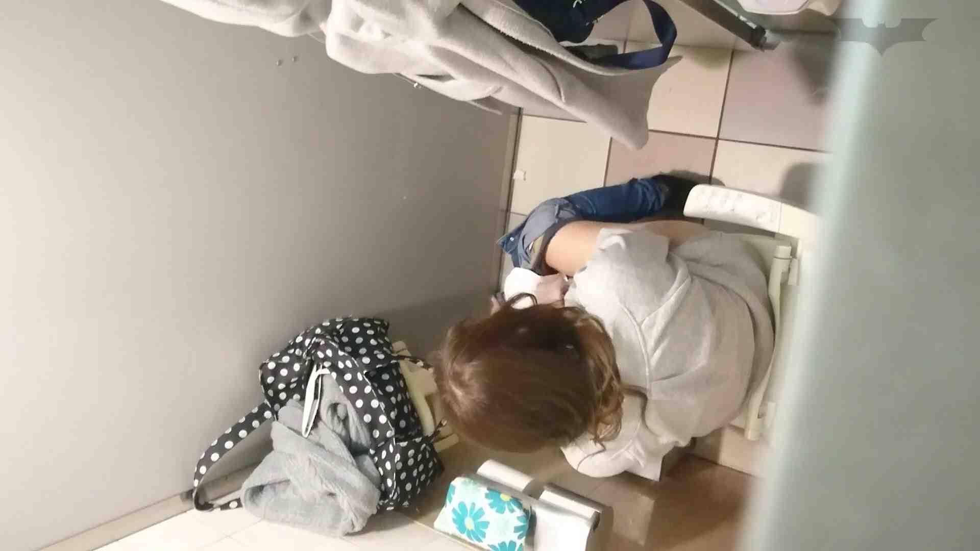 化粧室絵巻 ショッピングモール編 VOL.11 0   いやらしいOL  98連発 69