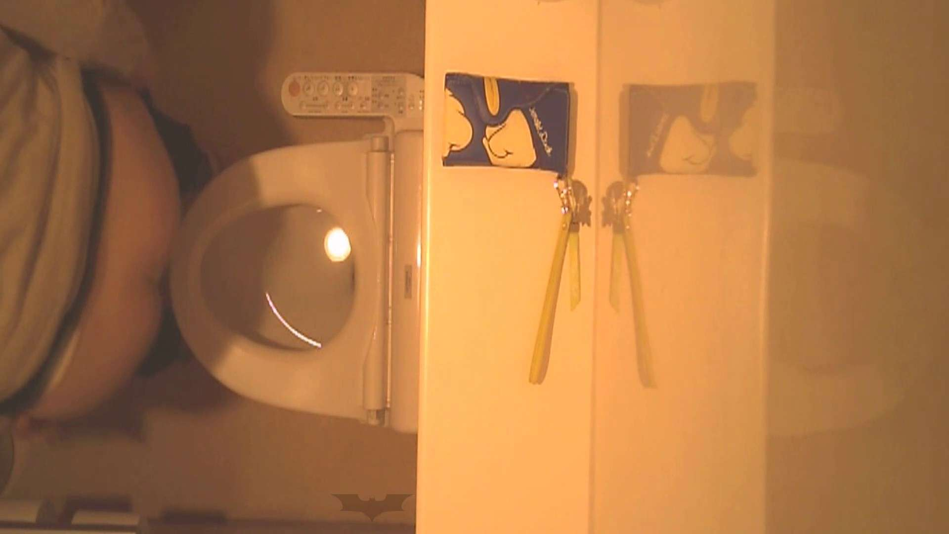潜入!!全国女子洗面所盗撮 Vol.07 投稿物 オメコ動画キャプチャ 56連発 6