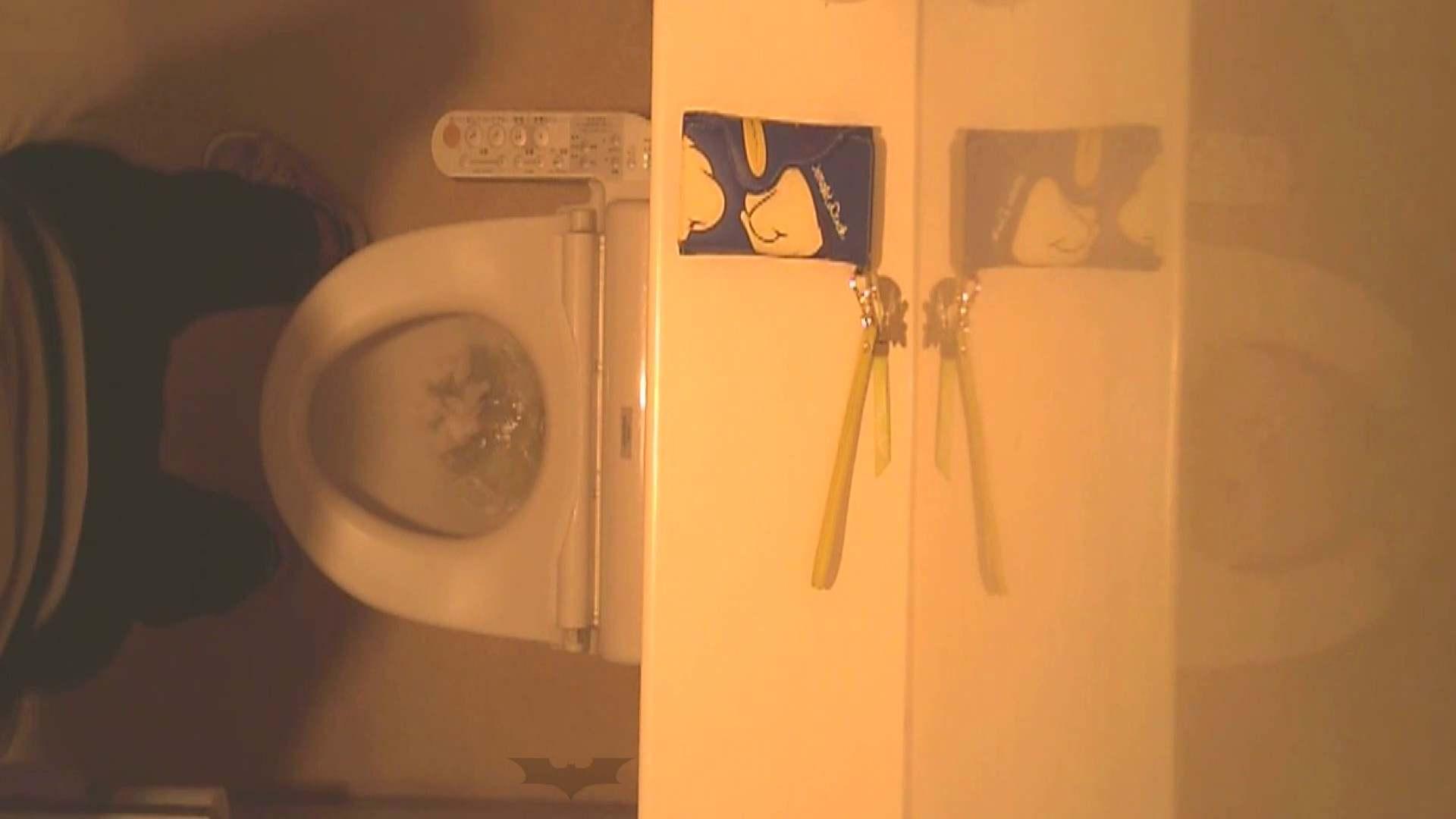 潜入!!全国女子洗面所盗撮 Vol.07 いやらしいOL オマンコ動画キャプチャ 56連発 10