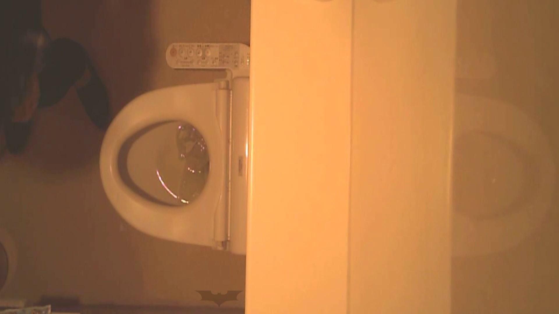 潜入!!全国女子洗面所盗撮 Vol.07 いやらしいOL オマンコ動画キャプチャ 56連発 18