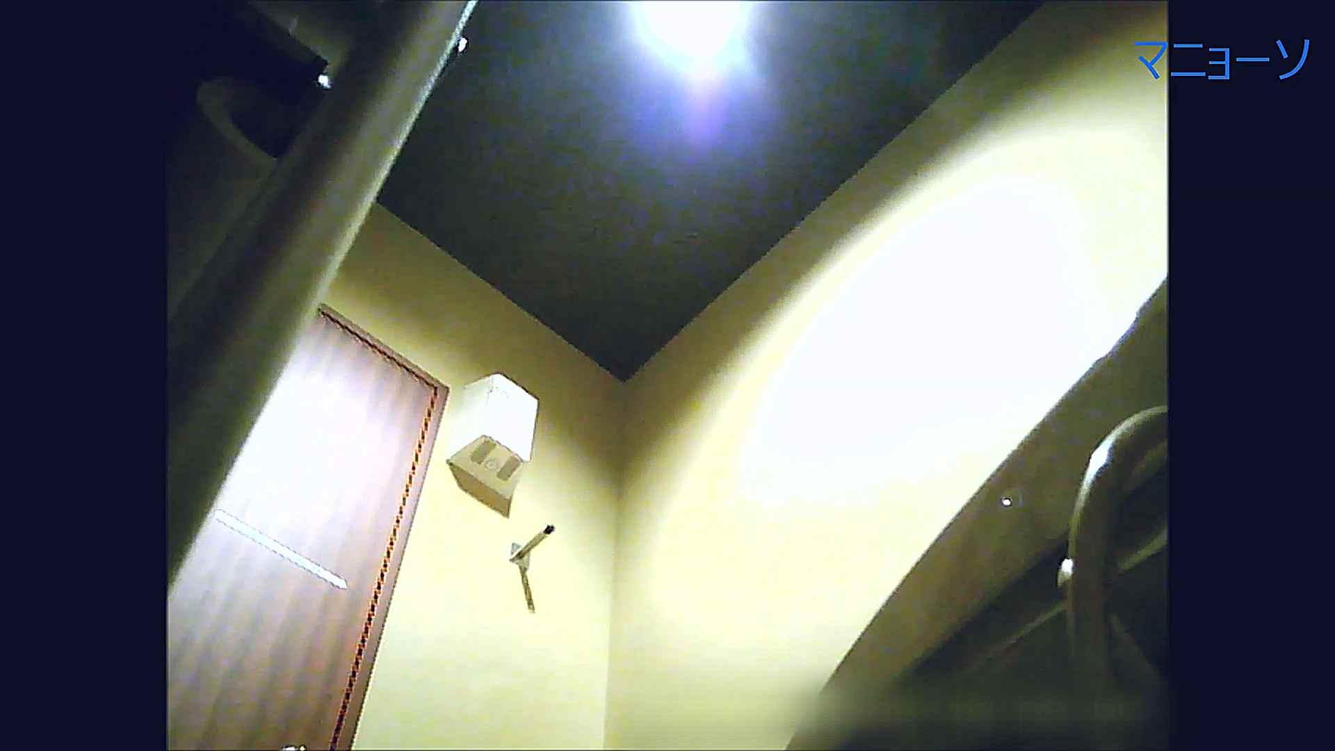 トイレでひと肌脱いでもらいました (OL編)Vol.14 トイレの中の女の子  55連発 52