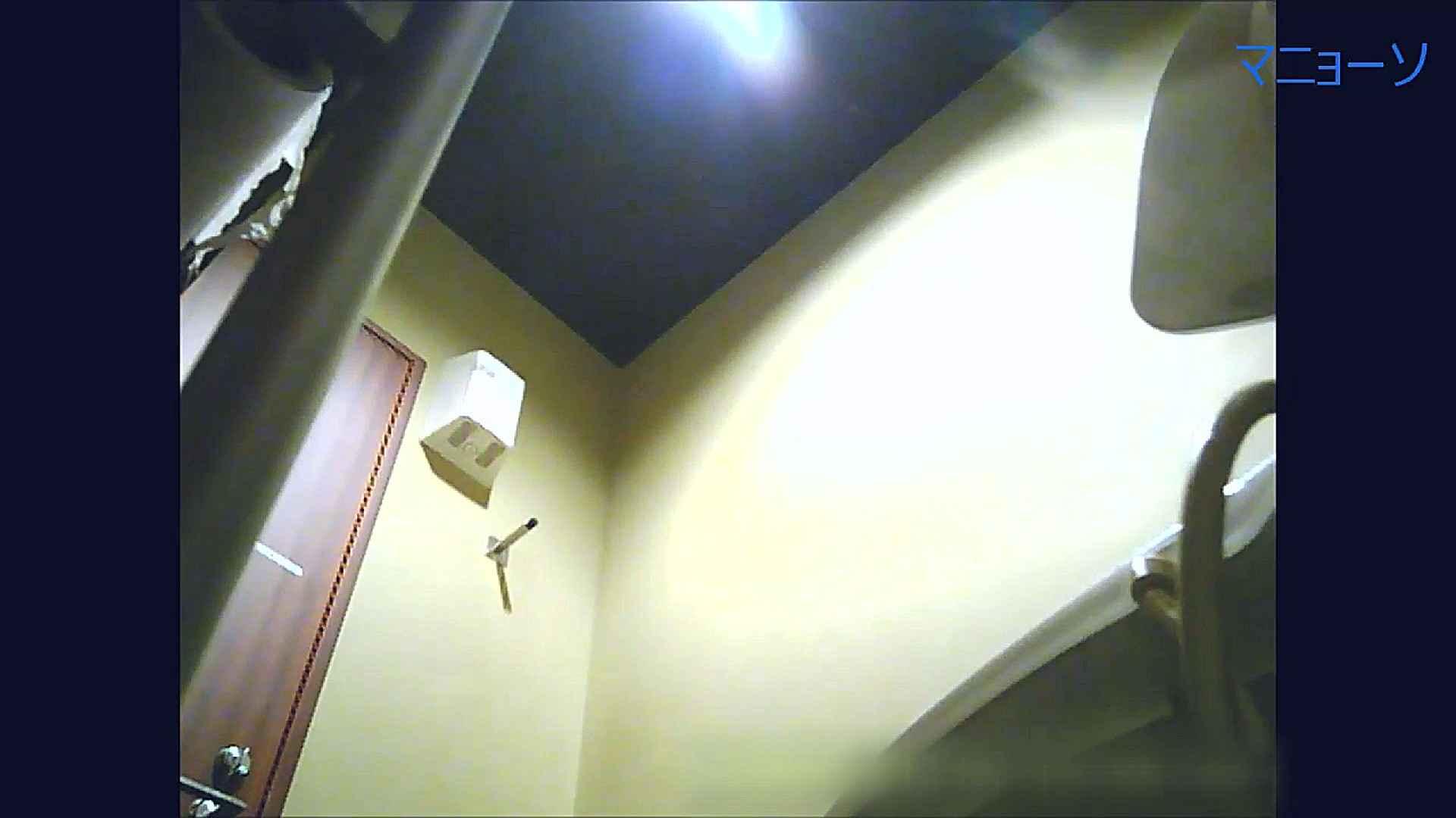 トイレでひと肌脱いでもらいました (OL編)Vol.15 トイレの中の女の子 盗撮動画紹介 89連発 51