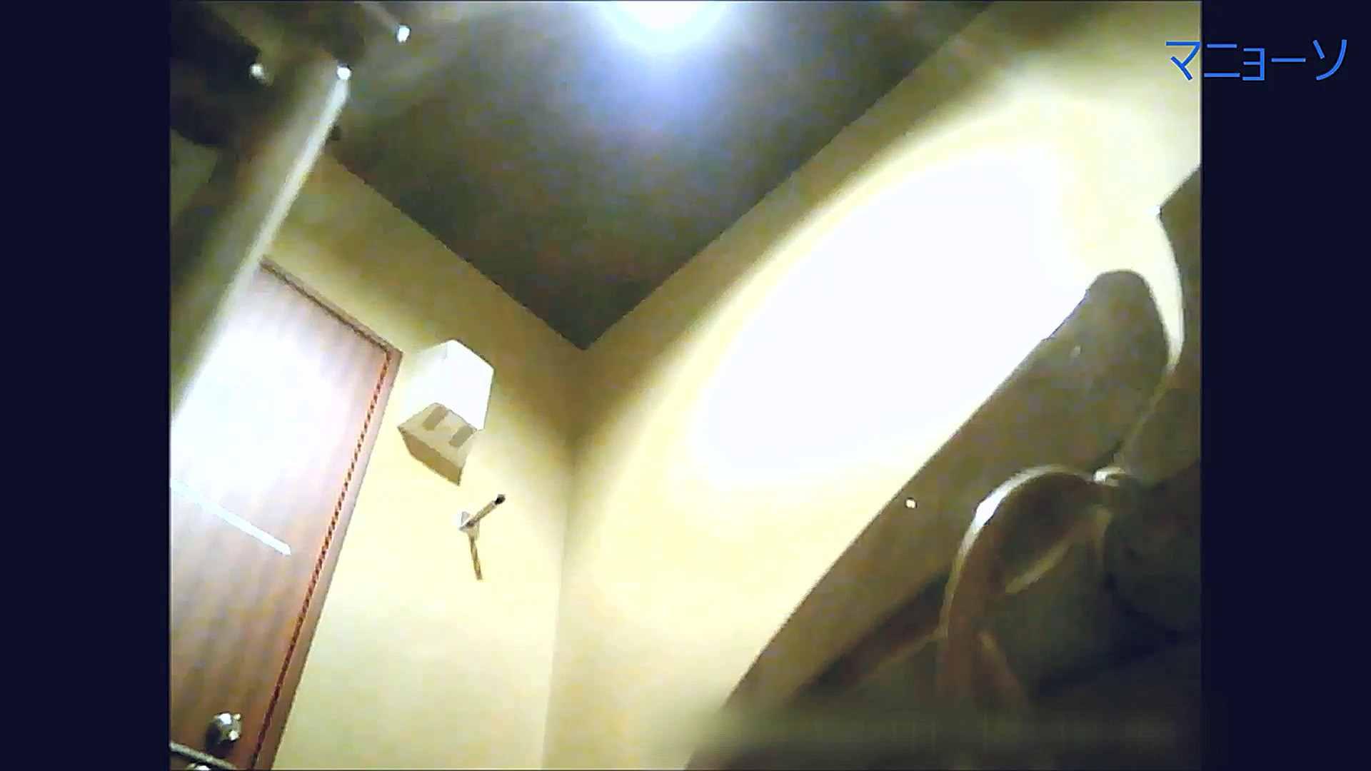 トイレでひと肌脱いでもらいました (OL編)Vol.15 いやらしいOL われめAV動画紹介 89連発 82