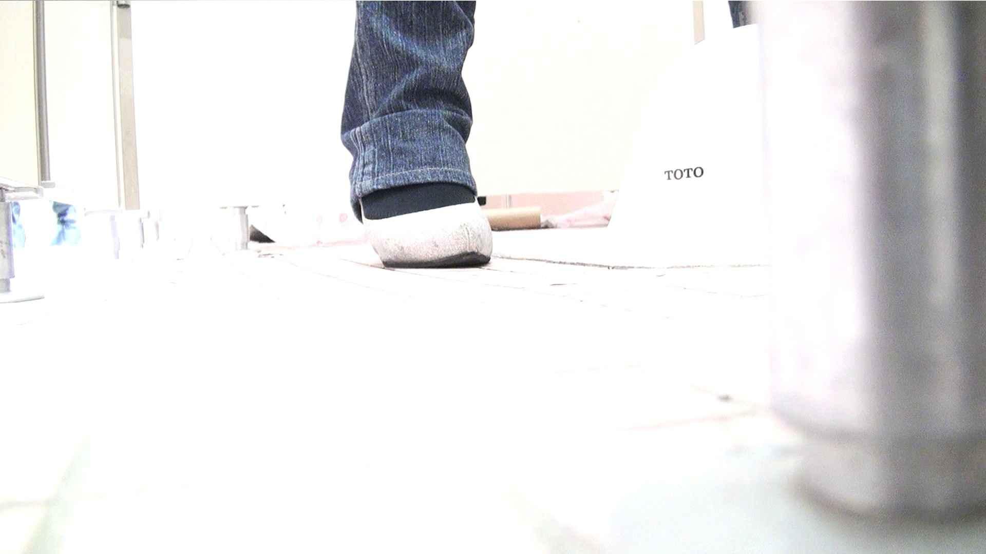 ※100個限定販売 至高下半身盗撮 プレミアム Vol.29 ハイビジョン 盗撮大放出 SEX無修正画像 54連発 10