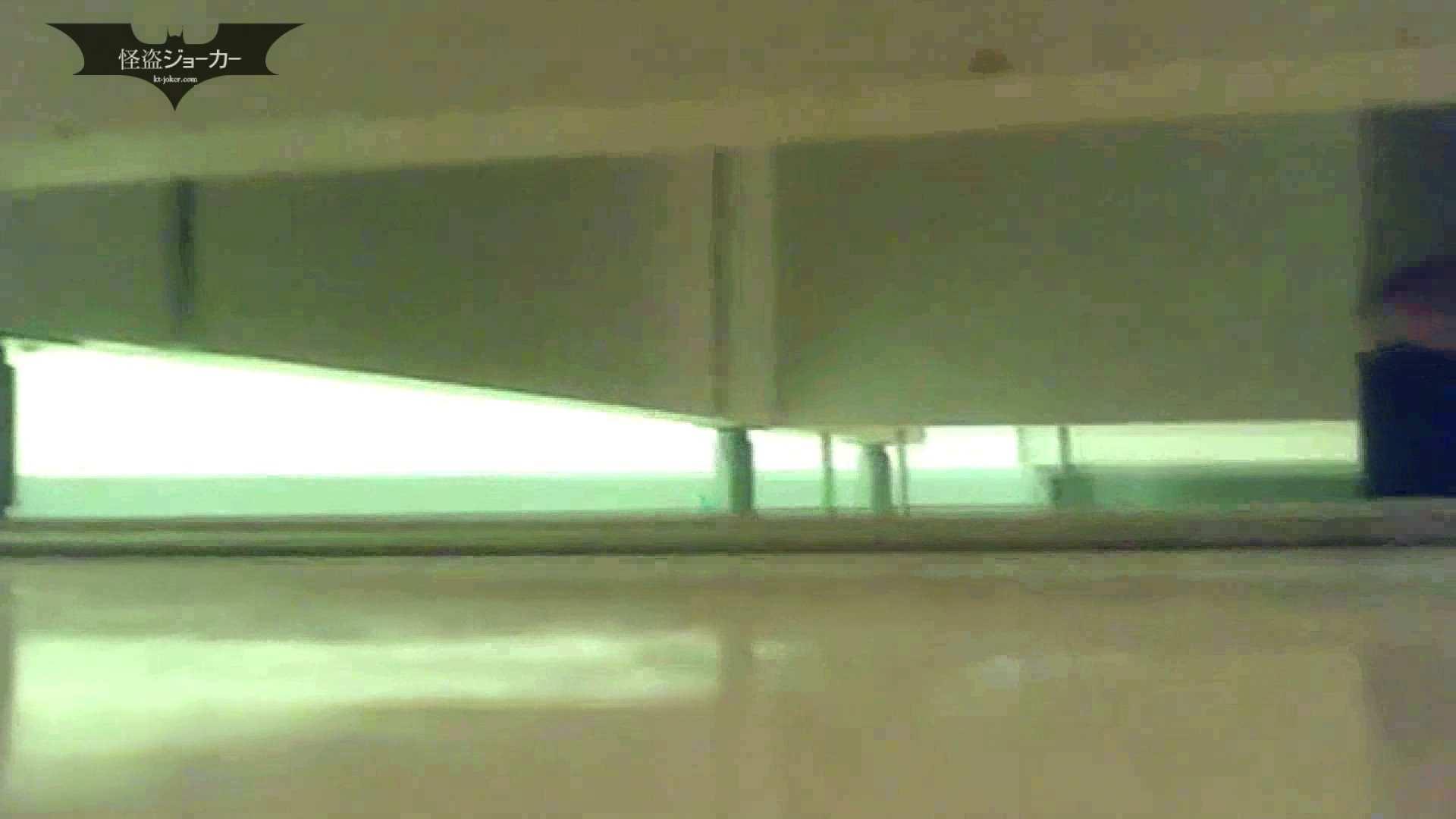 夏の思い出浜辺トイレ盗撮Vol.05 潜入 性交動画流出 55連発 29