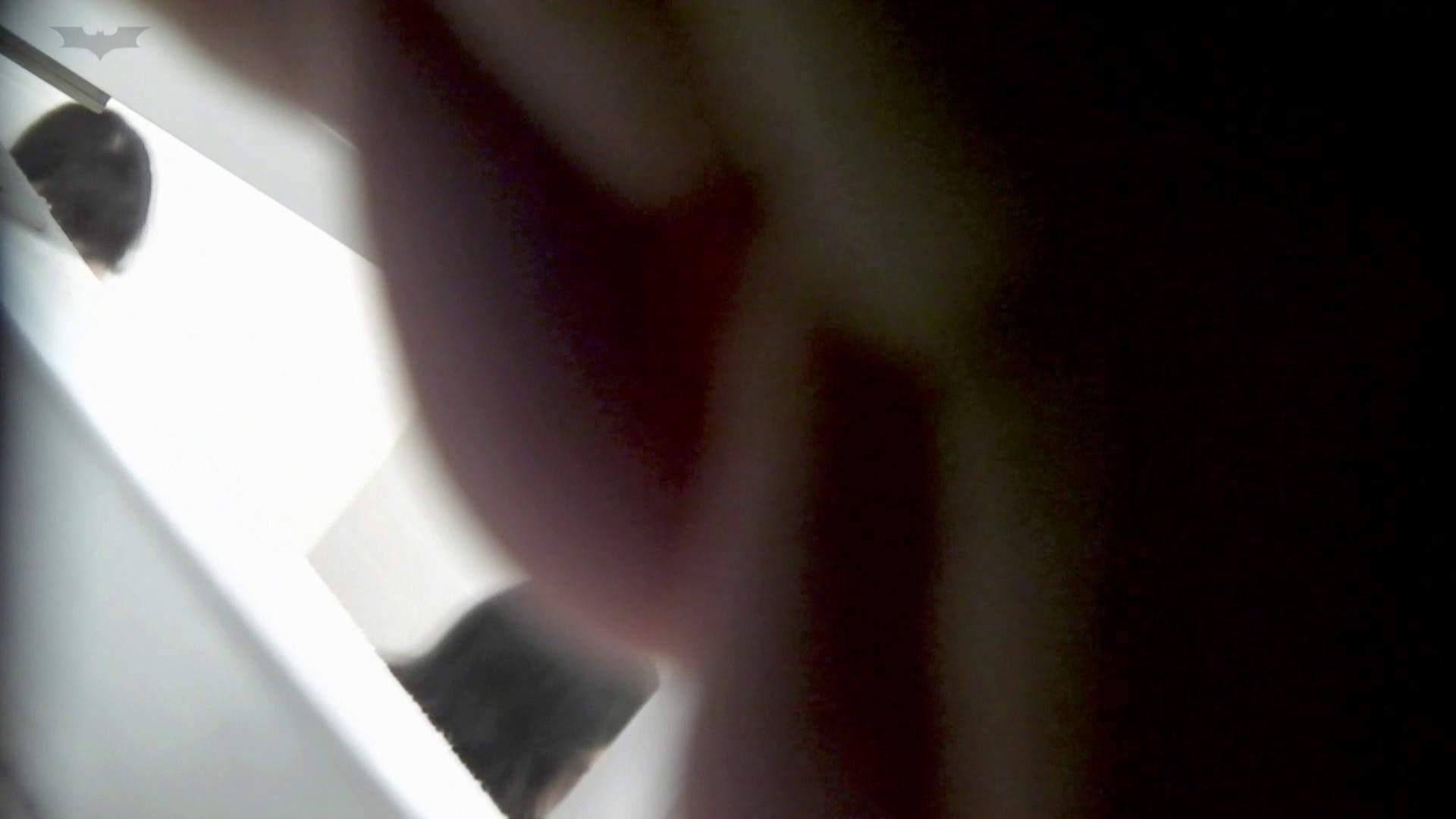 お銀 vol.73 シリーズ一番エロい尻登場 洗面所 性交動画流出 59連発 28