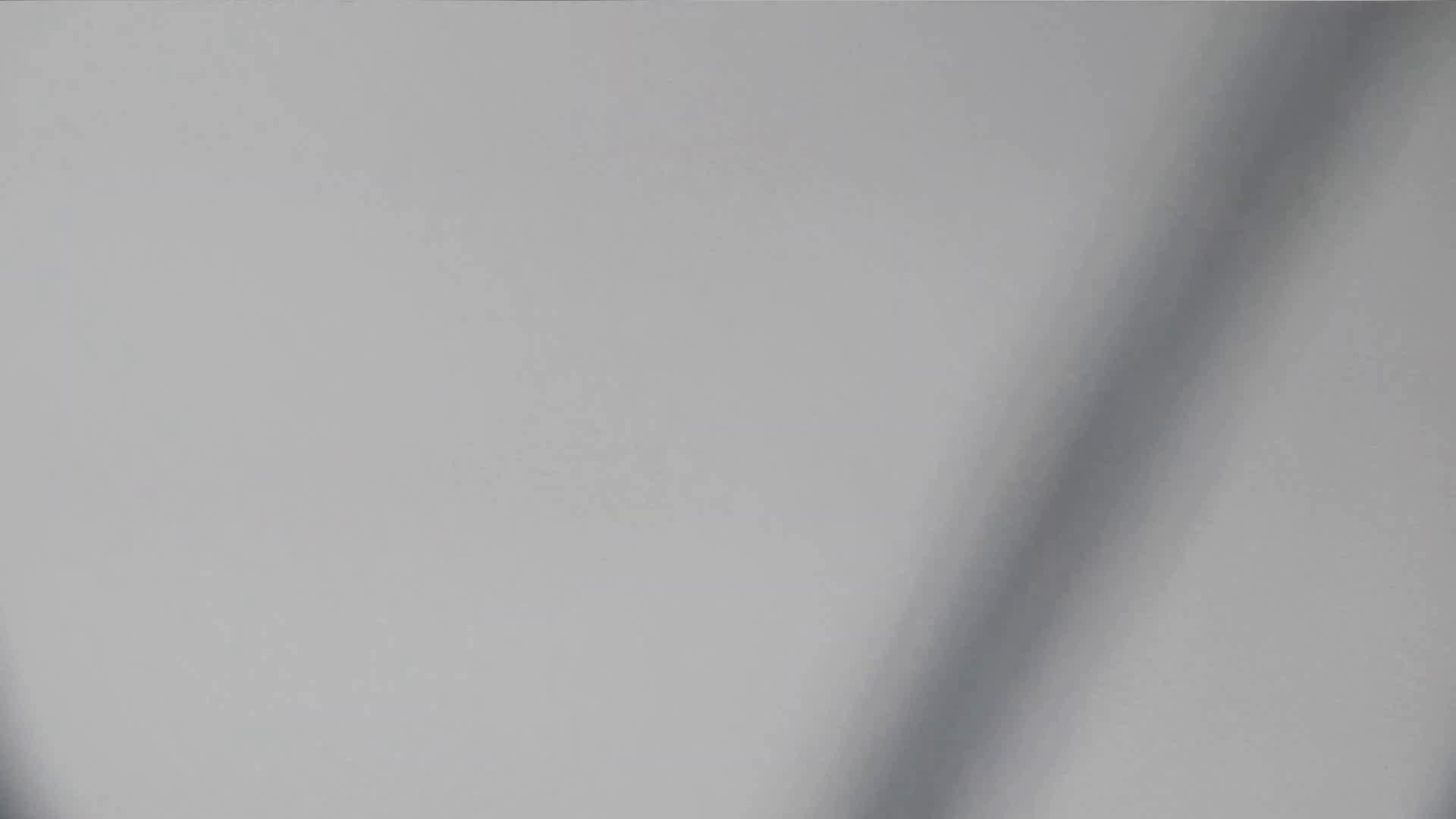 お銀さんの「洗面所突入レポート!!」 vol.29 ∑(゚Д゚)アッ! 0  81連発 64