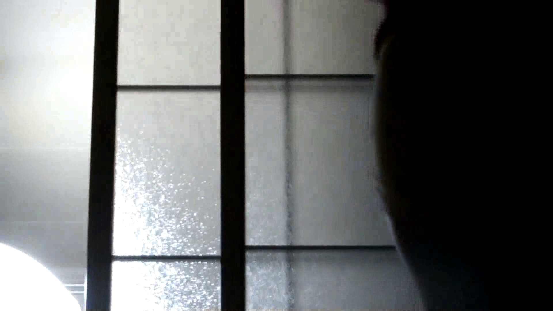 リアル盗撮 清楚なお女市さんのマル秘私生活② 高画質 セックス画像 56連発 14
