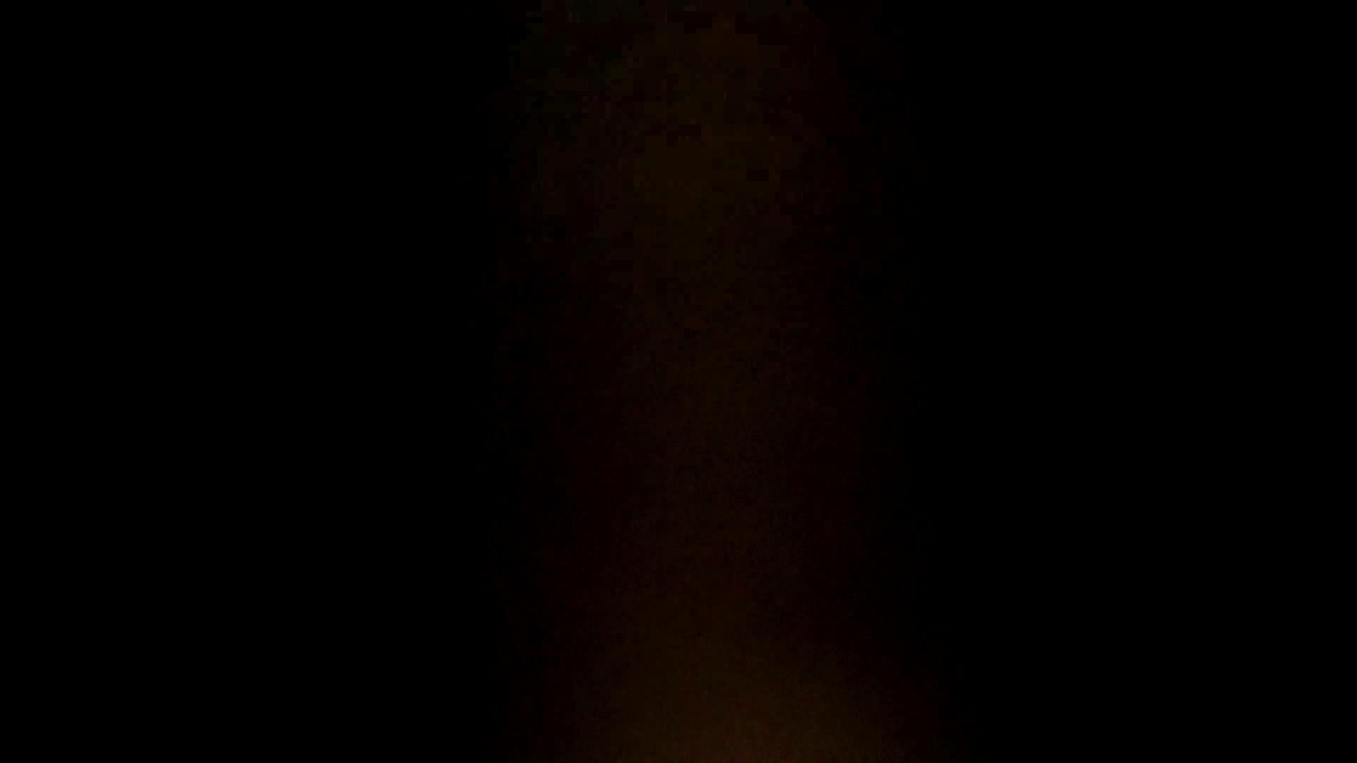 リアル盗撮 清楚なお女市さんのマル秘私生活② 高画質 セックス画像 56連発 29