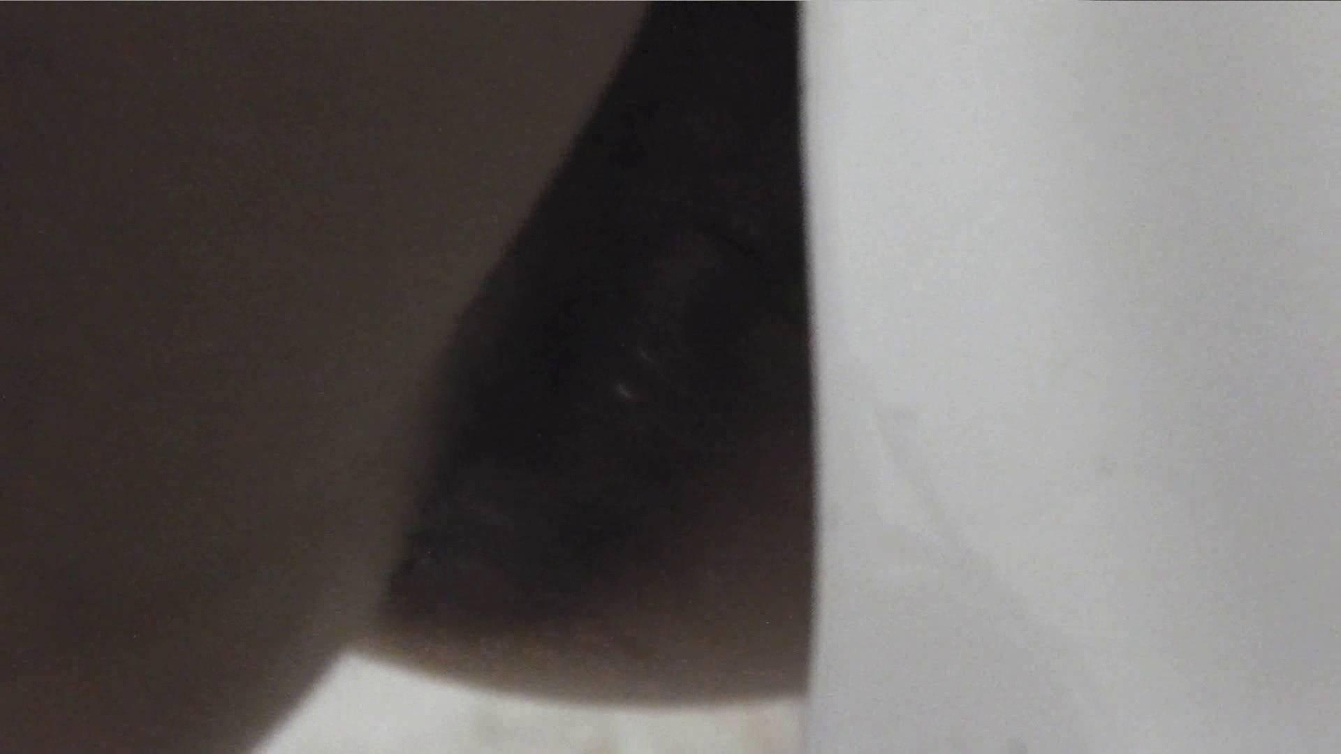 洗面所特攻隊 vol.001 清楚な美脚さん 洗面所 性交動画流出 89連発 23