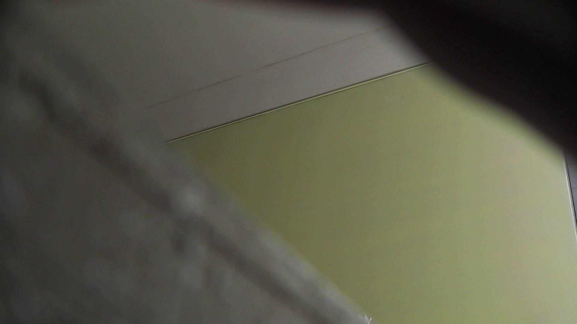 洗面所特攻隊 vol.001 清楚な美脚さん 洗面所 性交動画流出 89連発 83