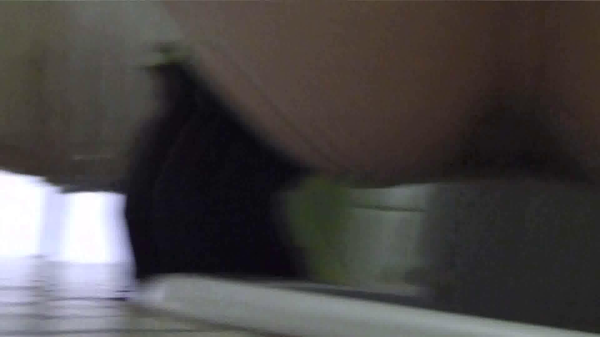 洗面所特攻隊 vol.016 ナナメな方 洗面所 われめAV動画紹介 40連発 11