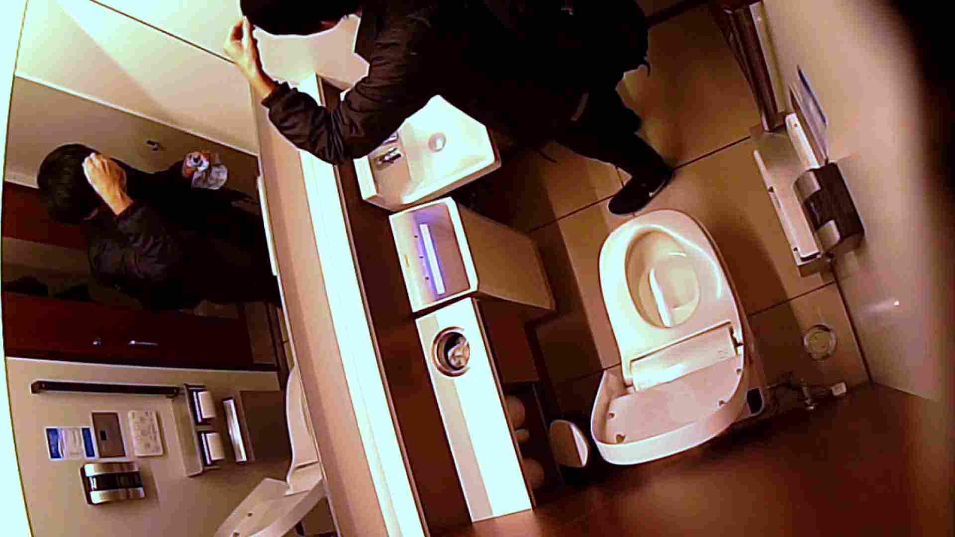無修正セックス盗撮:すみませんが覗かせてください Vol.32:トイレ