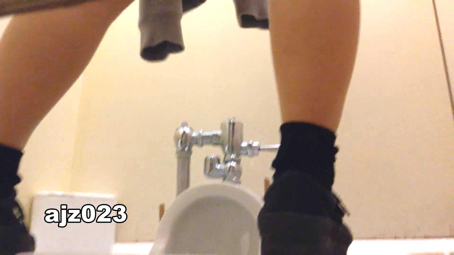 某有名大学女性洗面所 vol.23 和式 AV無料動画キャプチャ 48連発 7