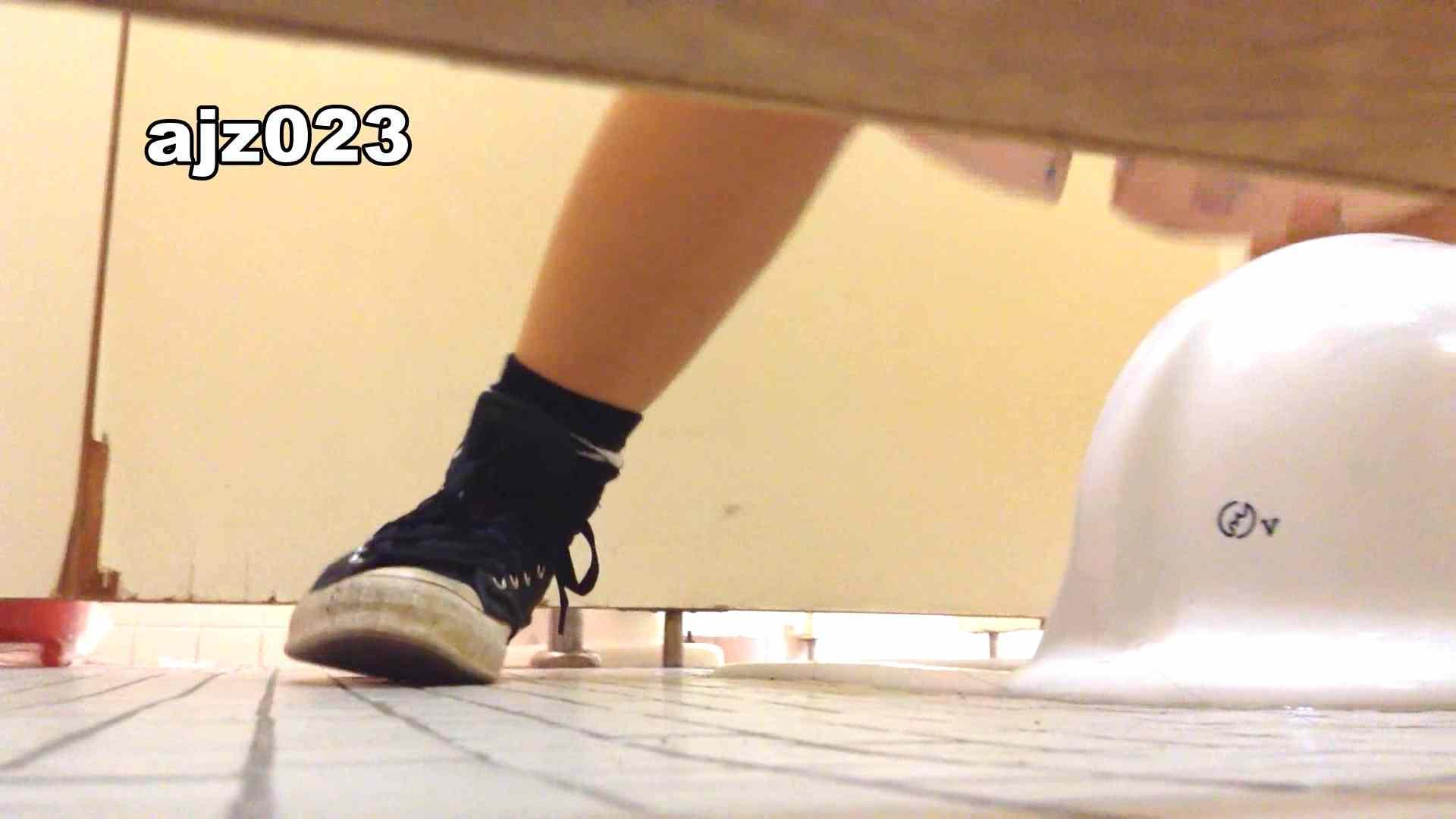 某有名大学女性洗面所 vol.23 和式 AV無料動画キャプチャ 48連発 27