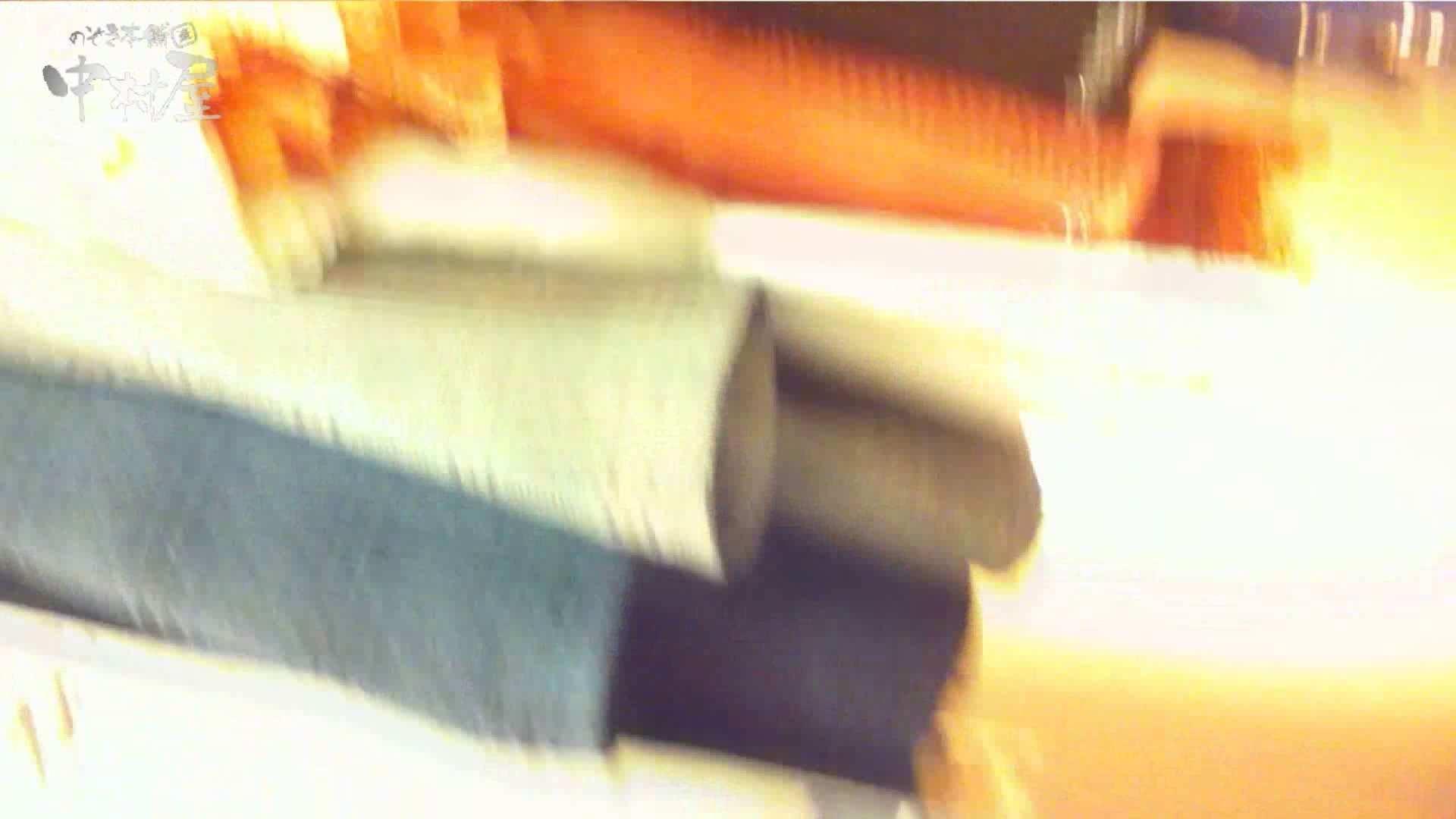 vol.75 美人アパレル胸チラ&パンチラ きれいな髪のおねーさんはド派手パンツ パンツ 戯れ無修正画像 86連発 86