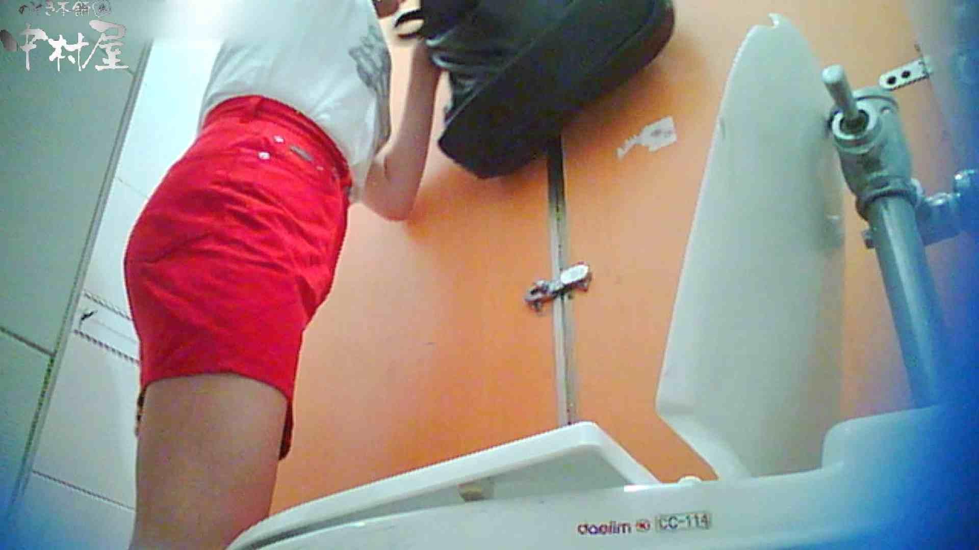 韓流トイレ盗撮vol.14 トイレの中の女の子 濡れ場動画紹介 75連発 65