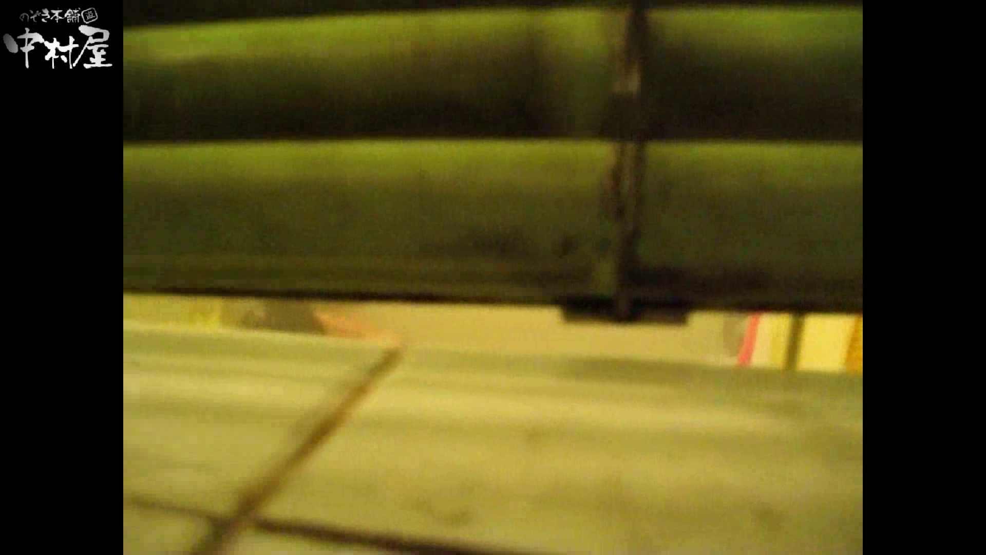 民家風呂専門盗撮師の超危険映像 vol.012 民家 アダルト動画キャプチャ 94連発 47