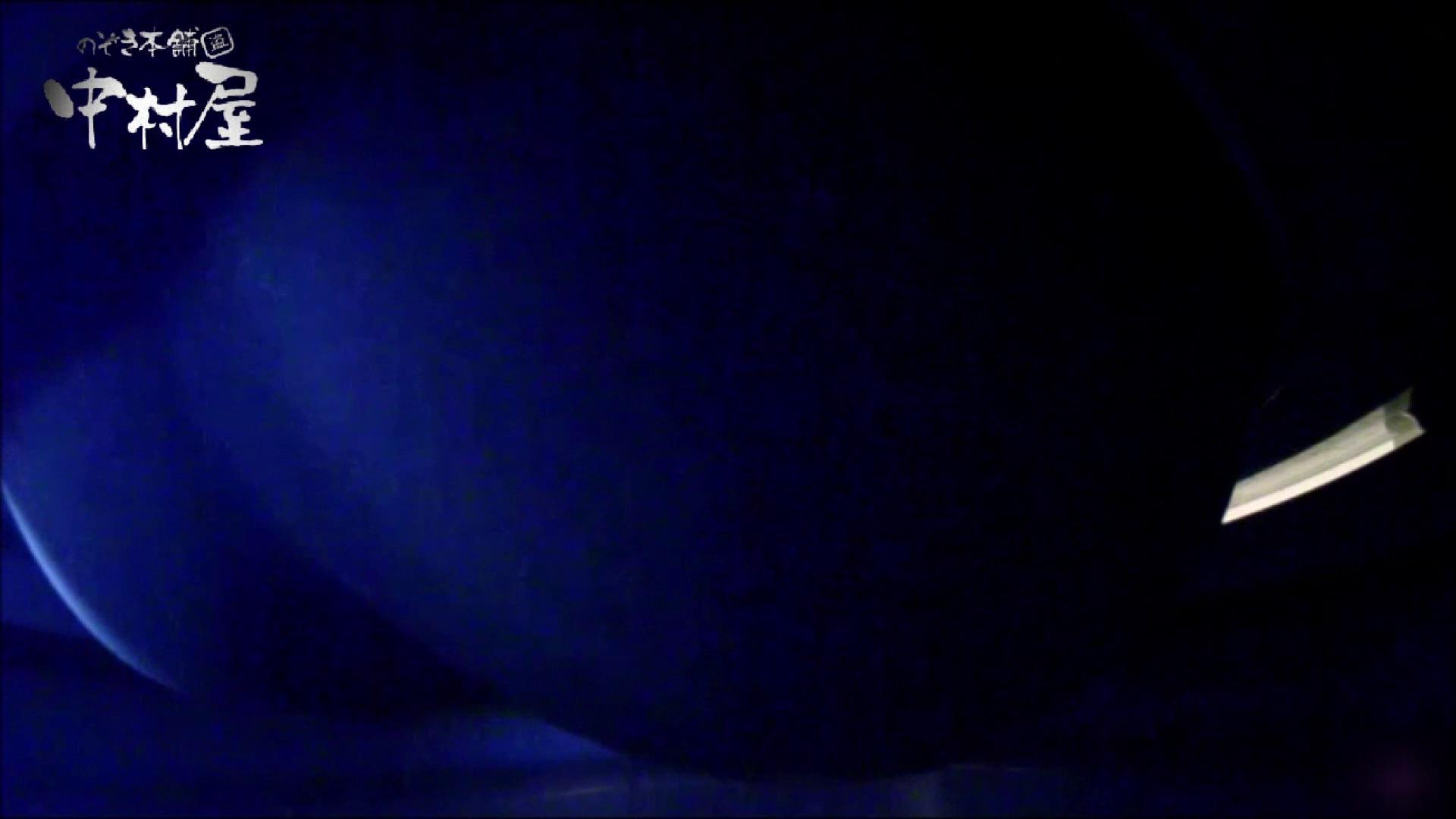 女子トイレ盗撮~某ファミレス編~vol.06 いやらしいOL | 盗撮大放出  90連発 56