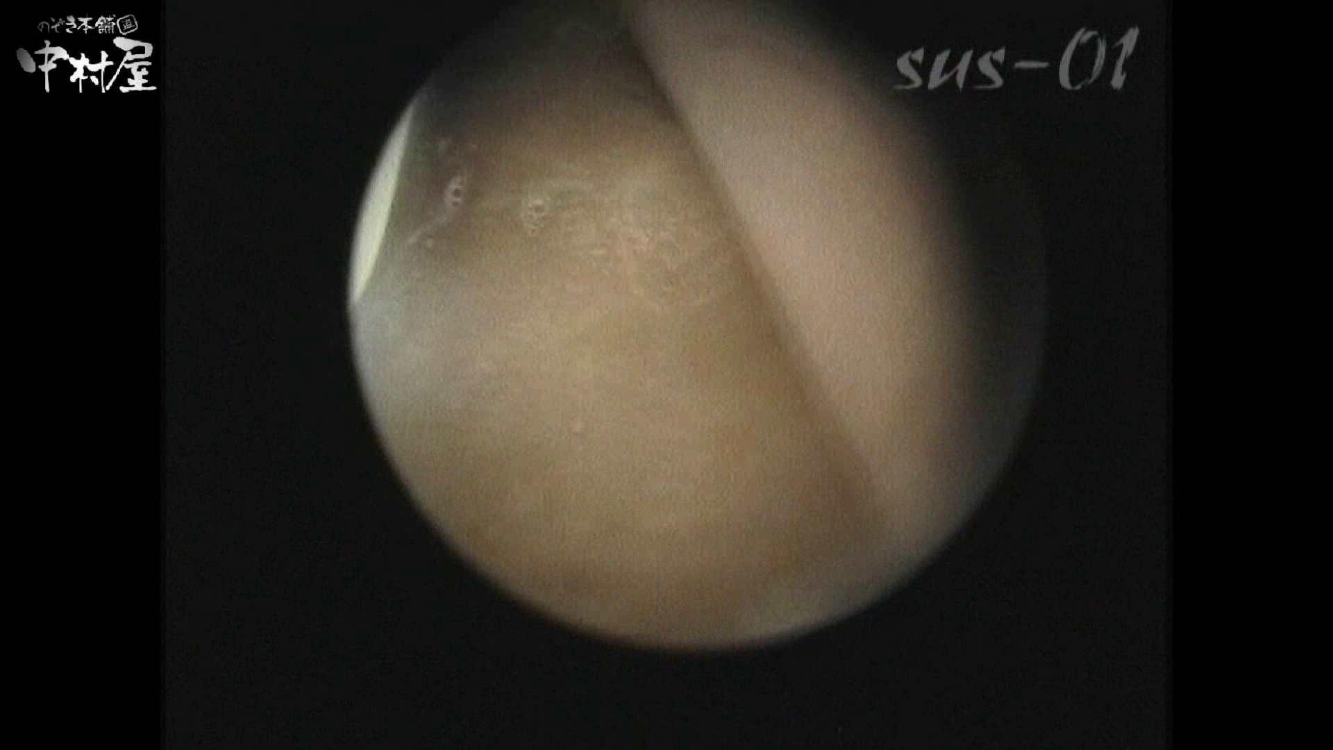 No.2 タレパイちゃんと美乳チャン。乳首の接写が中心。 0 | 美乳  27連発 21