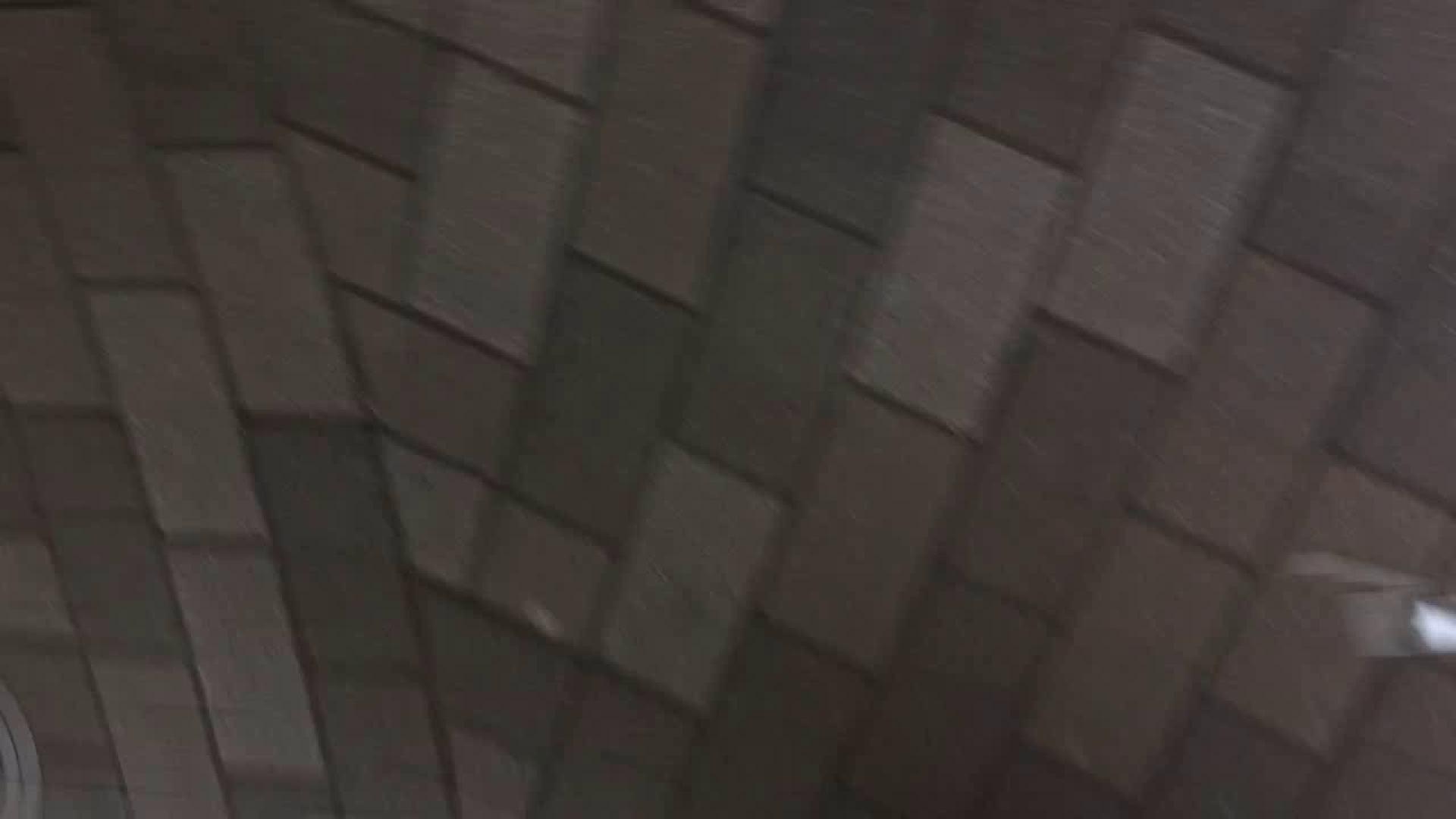 フルHD ショップ店員千人斬り! 大画面ノーカット完全版 vol.63 高画質 セックス無修正動画無料 45連発 11