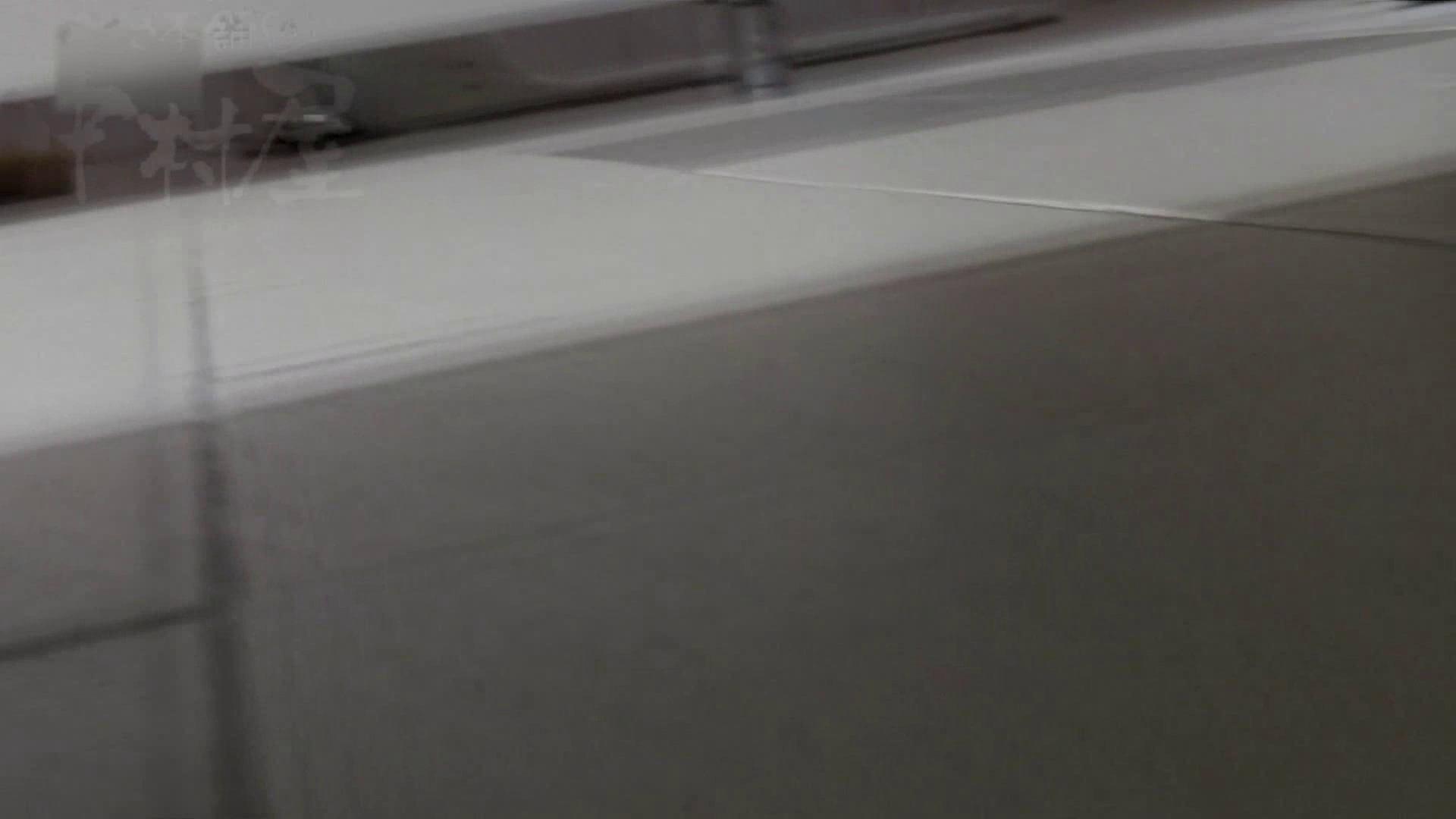 美しい日本の未来 No.06 更に侵入フロント究極な画質 排泄 エロ画像 76連発 75