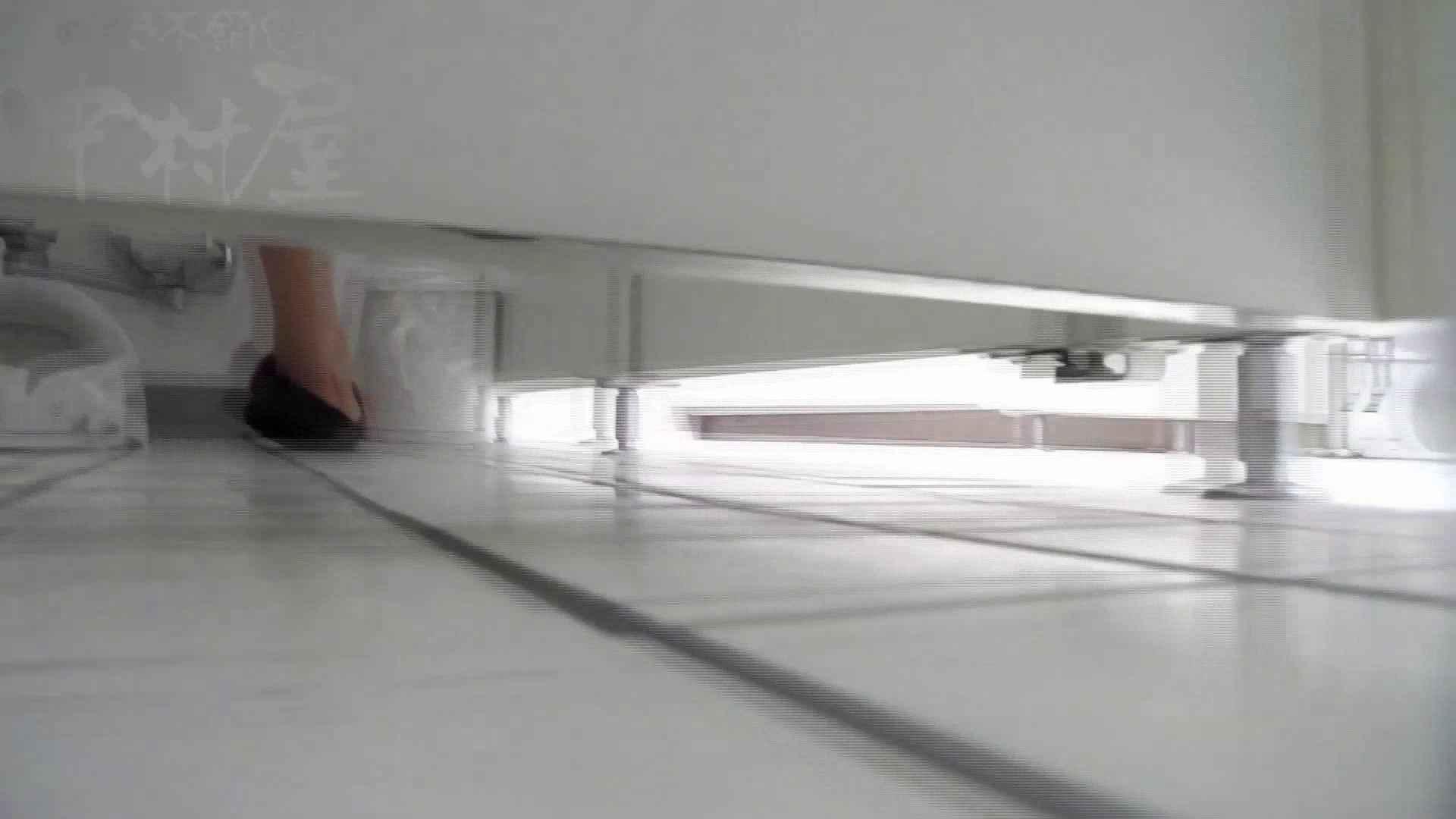 美しい日本の未来 No.22 未来進歩3 感動レベル予告のモデルつい登場か!! 排泄 女性器鑑賞 60連発 17