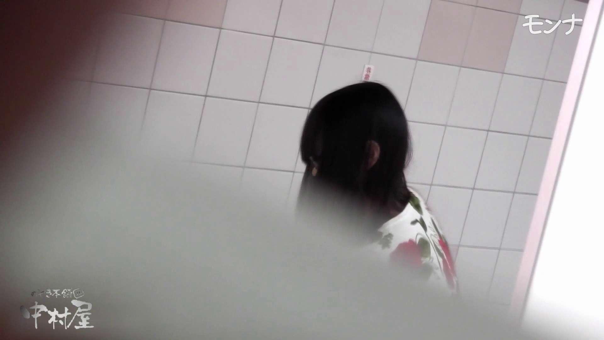 美しい日本の未来 No.57 見やすい拭き方に感謝です。その3 厠  73連発 68