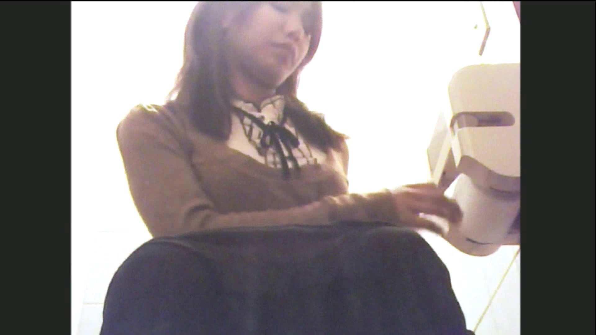 実録!!綺麗なお姉さんのトイレ事情・・・。vol.11 いやらしいOL 盗撮動画紹介 65連発 56