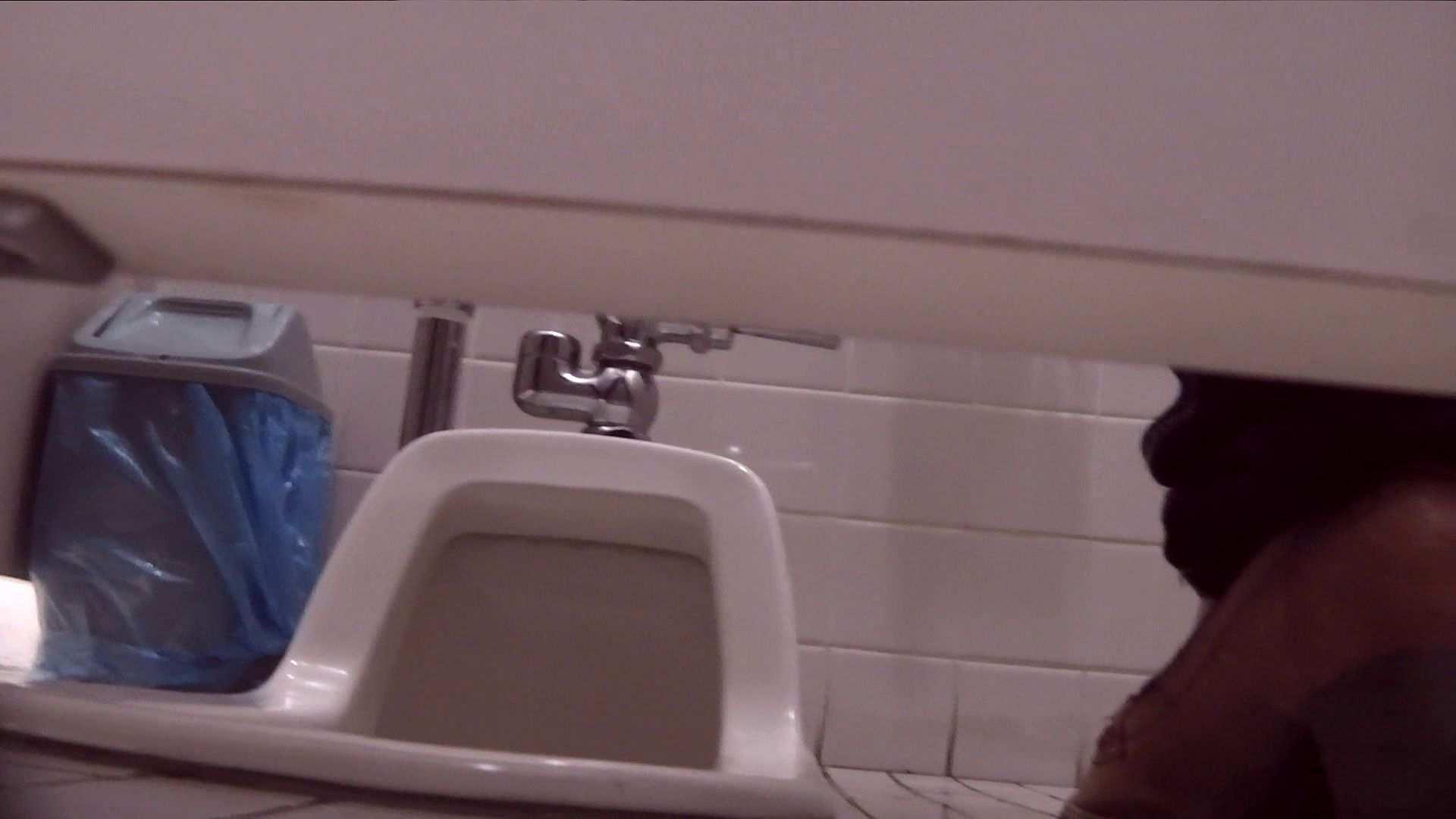 vol.17 命がけ潜伏洗面所! 張り裂けんばかりの大物 潜入 盗み撮り動画 69連発 28