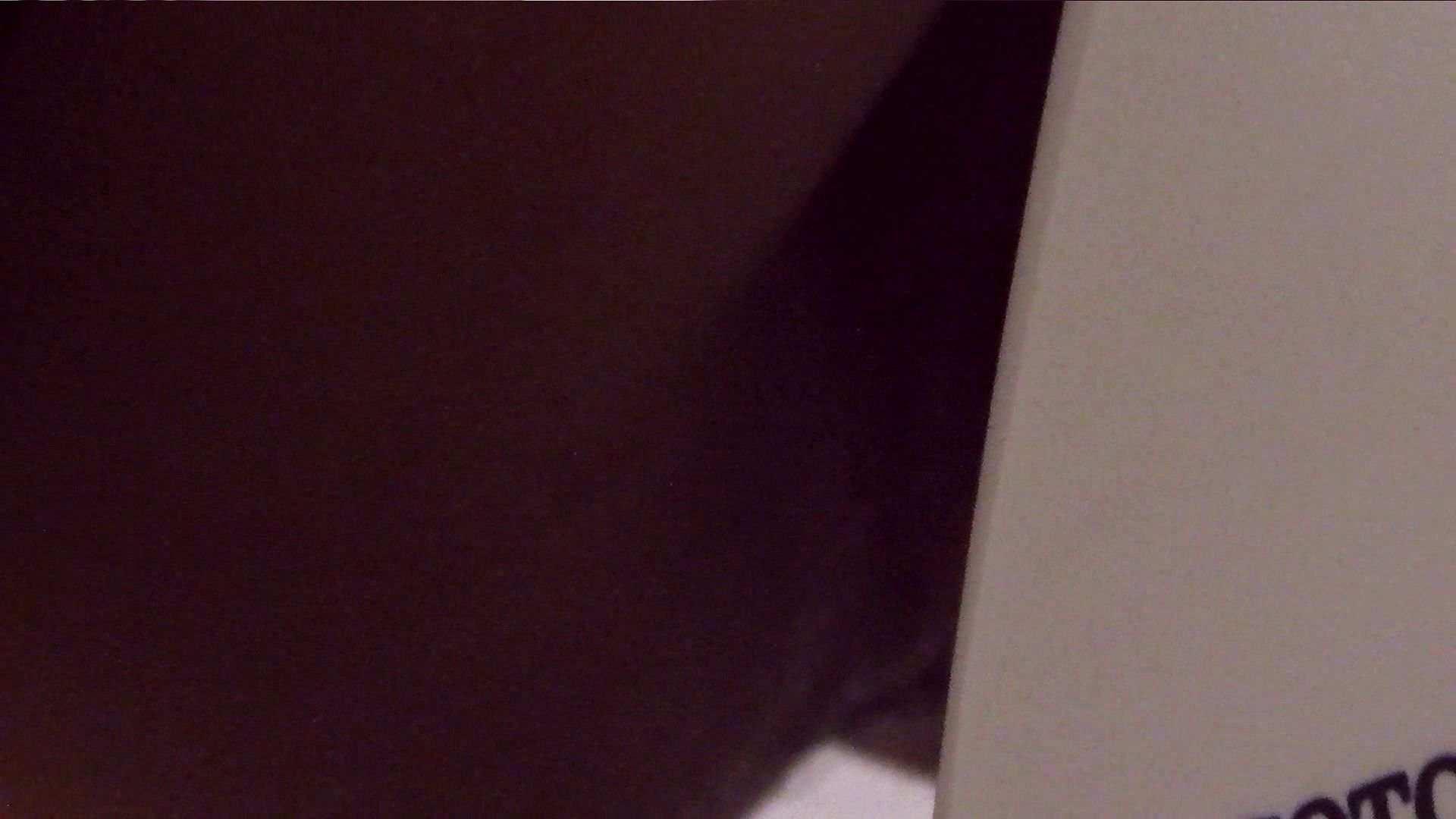 vol.17 命がけ潜伏洗面所! 張り裂けんばかりの大物 潜入 盗み撮り動画 69連発 64