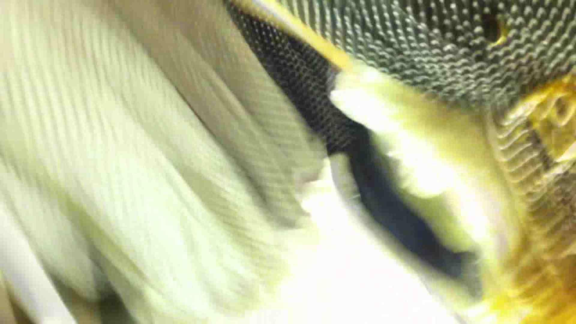 フルHD ショップ店員千人斬り! 大画面ノーカット完全版 vol.38 いやらしいOL おまんこ無修正動画無料 51連発 27